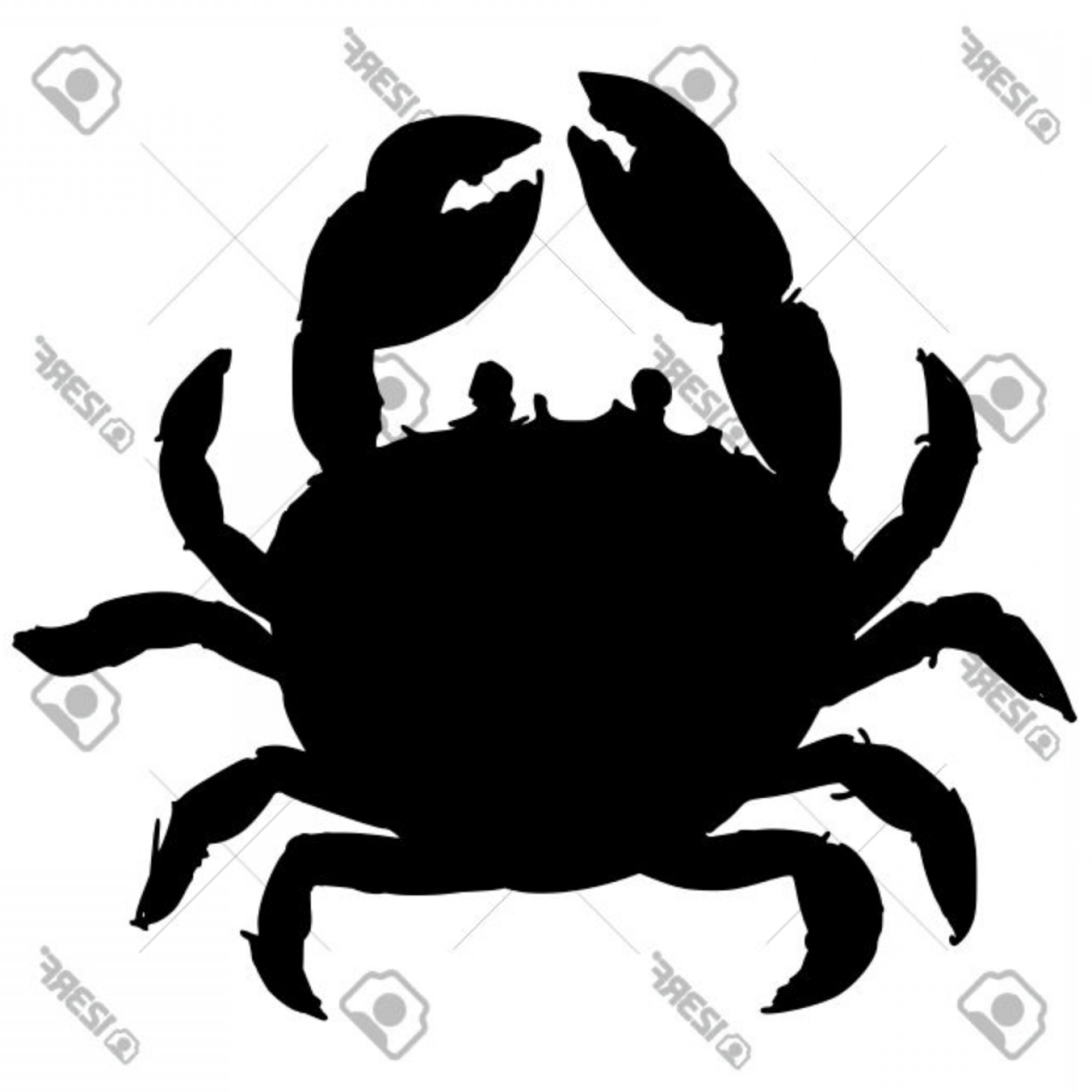 Crab Vector Black: Photostock Vector Black Silhouette Of Crab