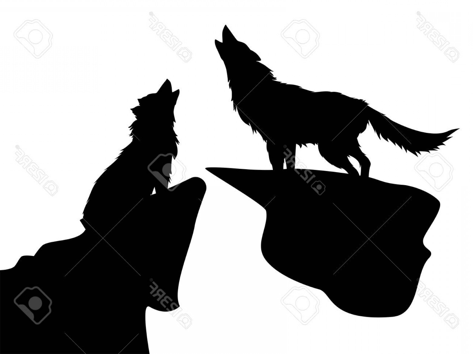 Calm Wolf Vector: Photostock Vector Black Silhouettes Of Howling Wolves On White Background