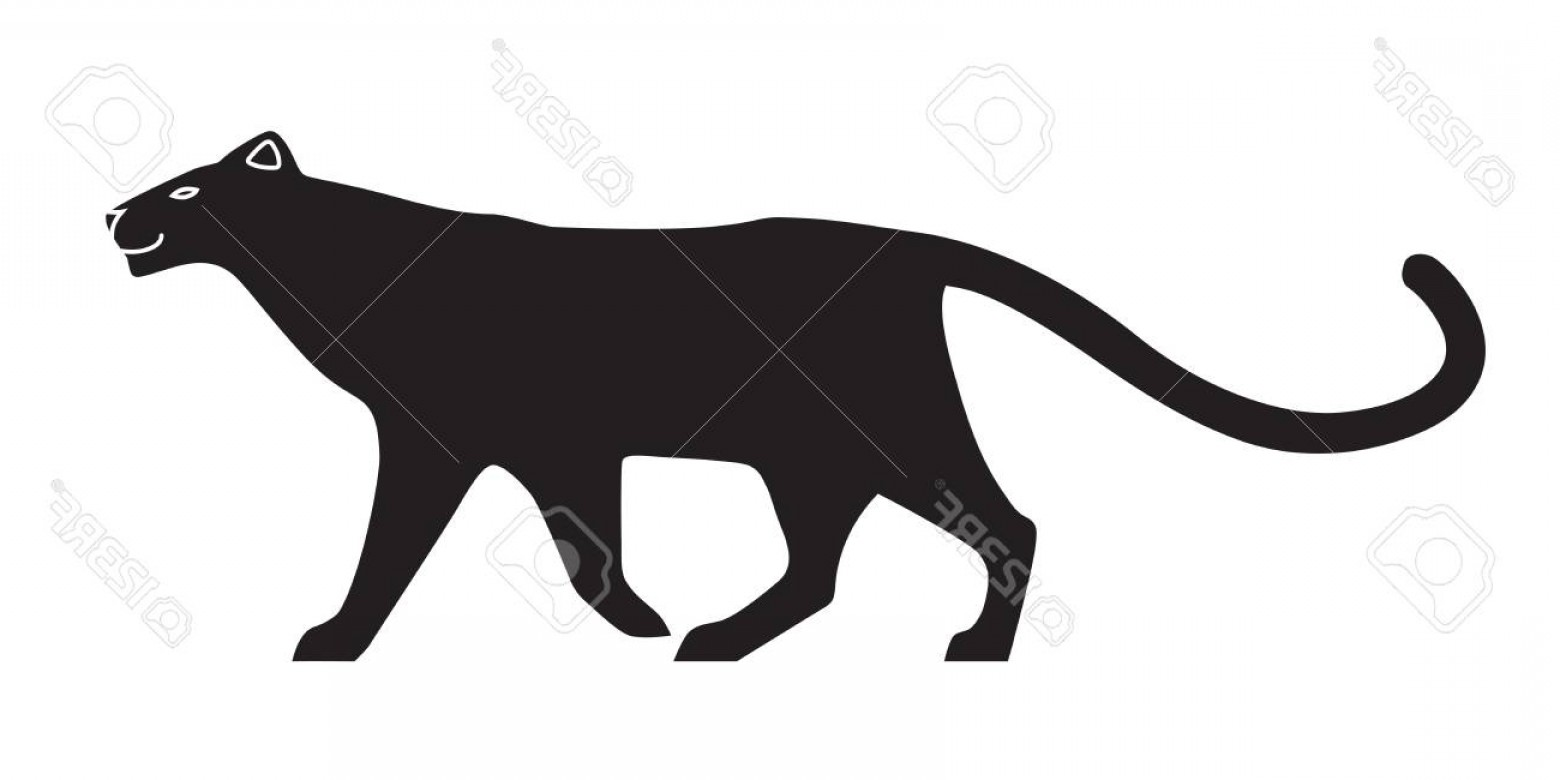 Panther Silhouette Vector: Photostock Vector Black Stylized Silhouette Of Panther Vector Wildcat On White Background Isolated On White Background