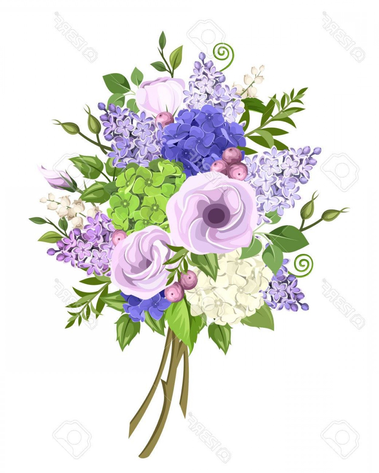 Purple Green And White Vector: Photostock Vector Bouquet Of Purple Blue White And Green Lisianthus Lilac And Hydrangea Flowers And Green Leaves Isola