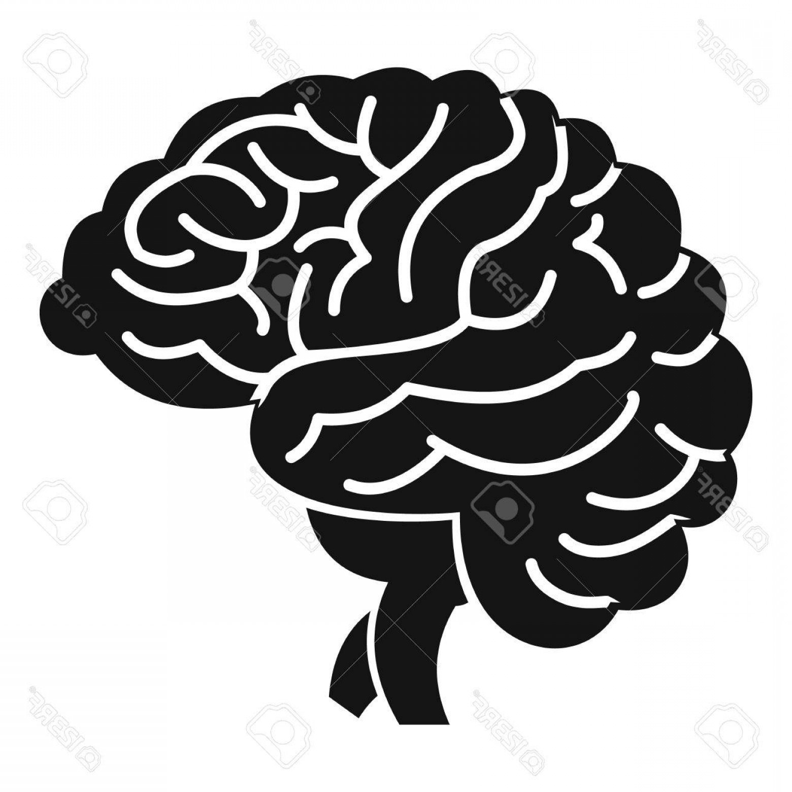 Brain Vector Art: Photostock Vector Brain Icon Simple Illustration Of Brain Vector Icon For Web