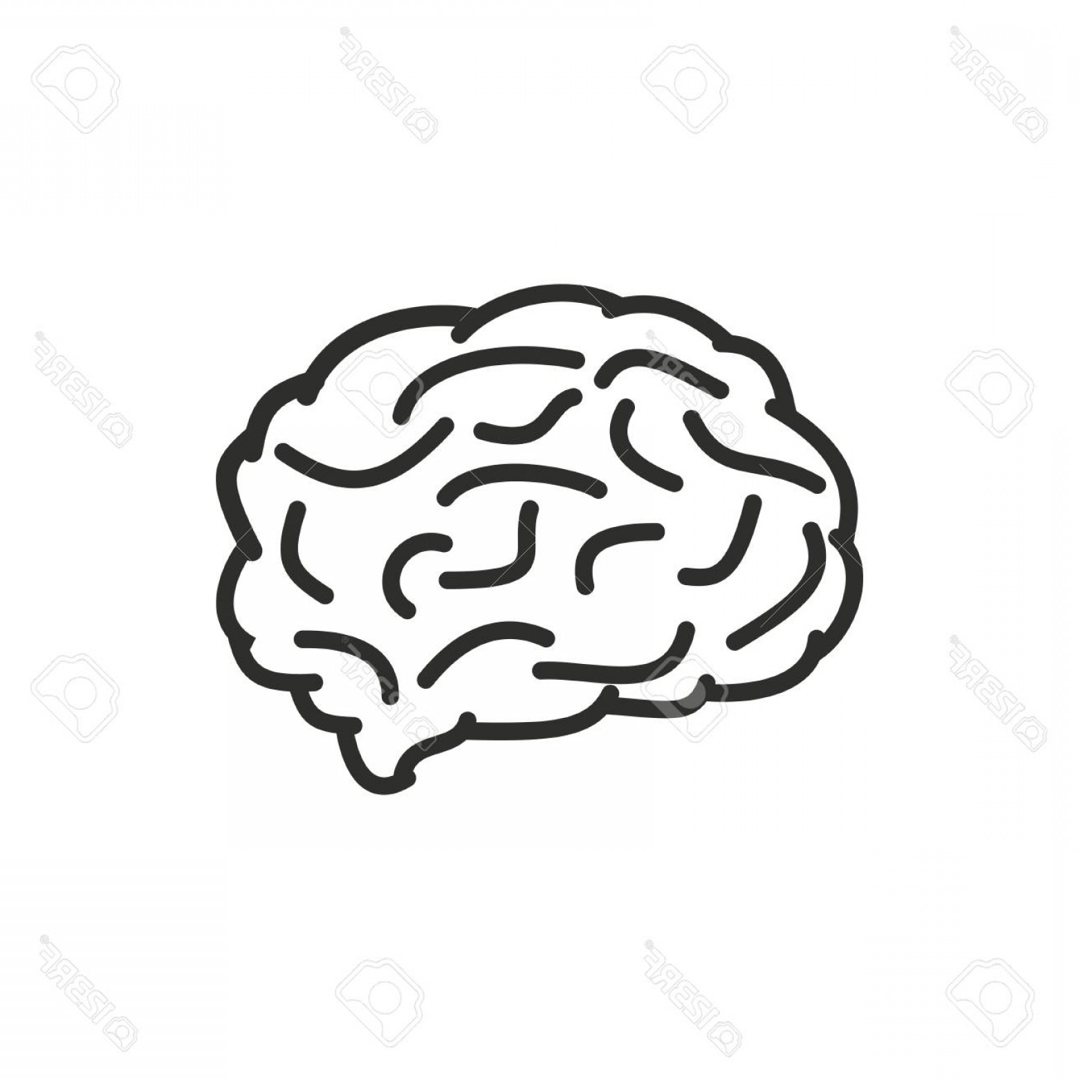 Brain Vector Art: Photostock Vector Brain Vector Icon Black Illustration Isolated On White Background For Graphic And Web Design