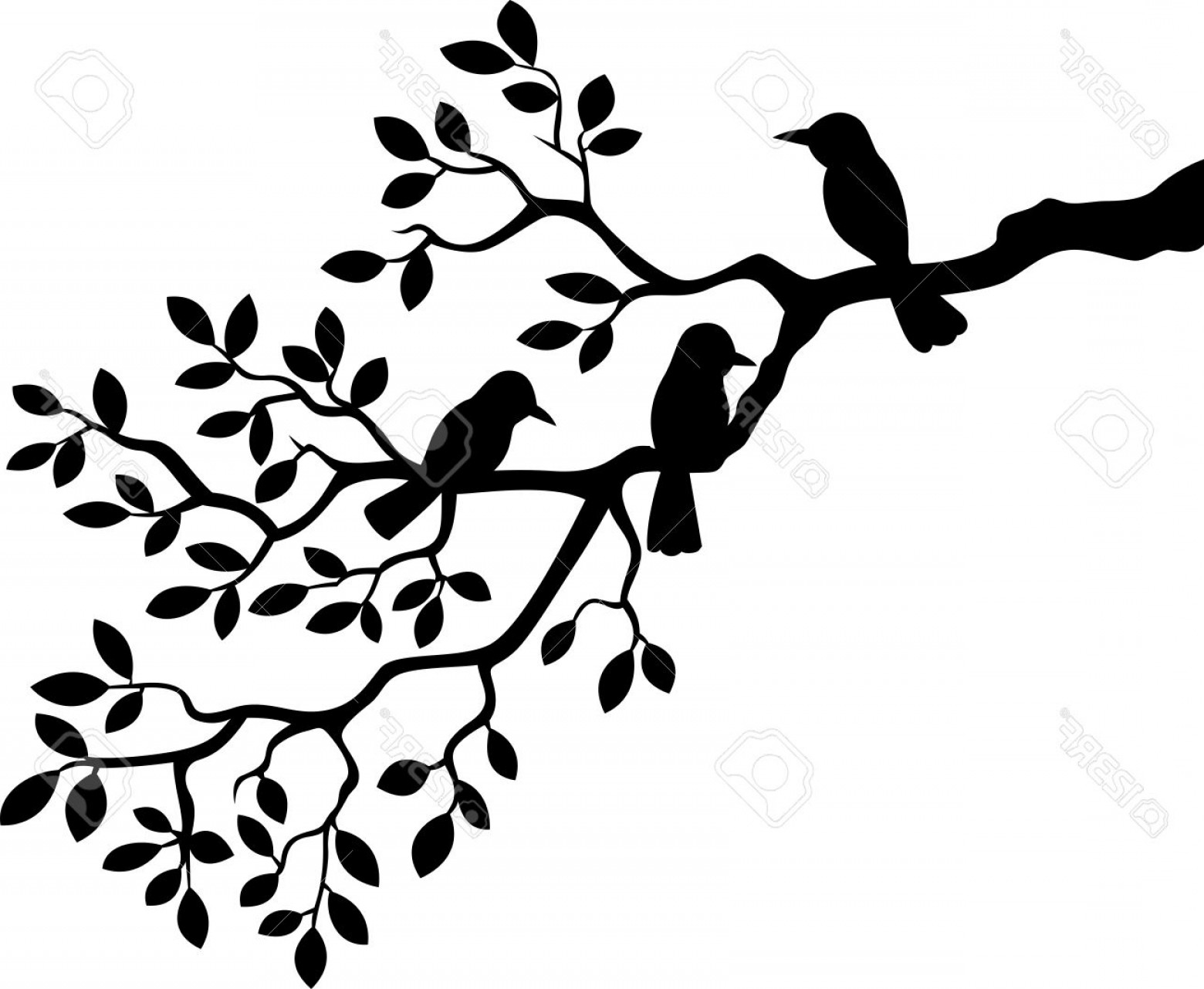 Contoon Free Black Vector Tree: Photostock Vector Cartoon Tree Branch With Bird Silhouette