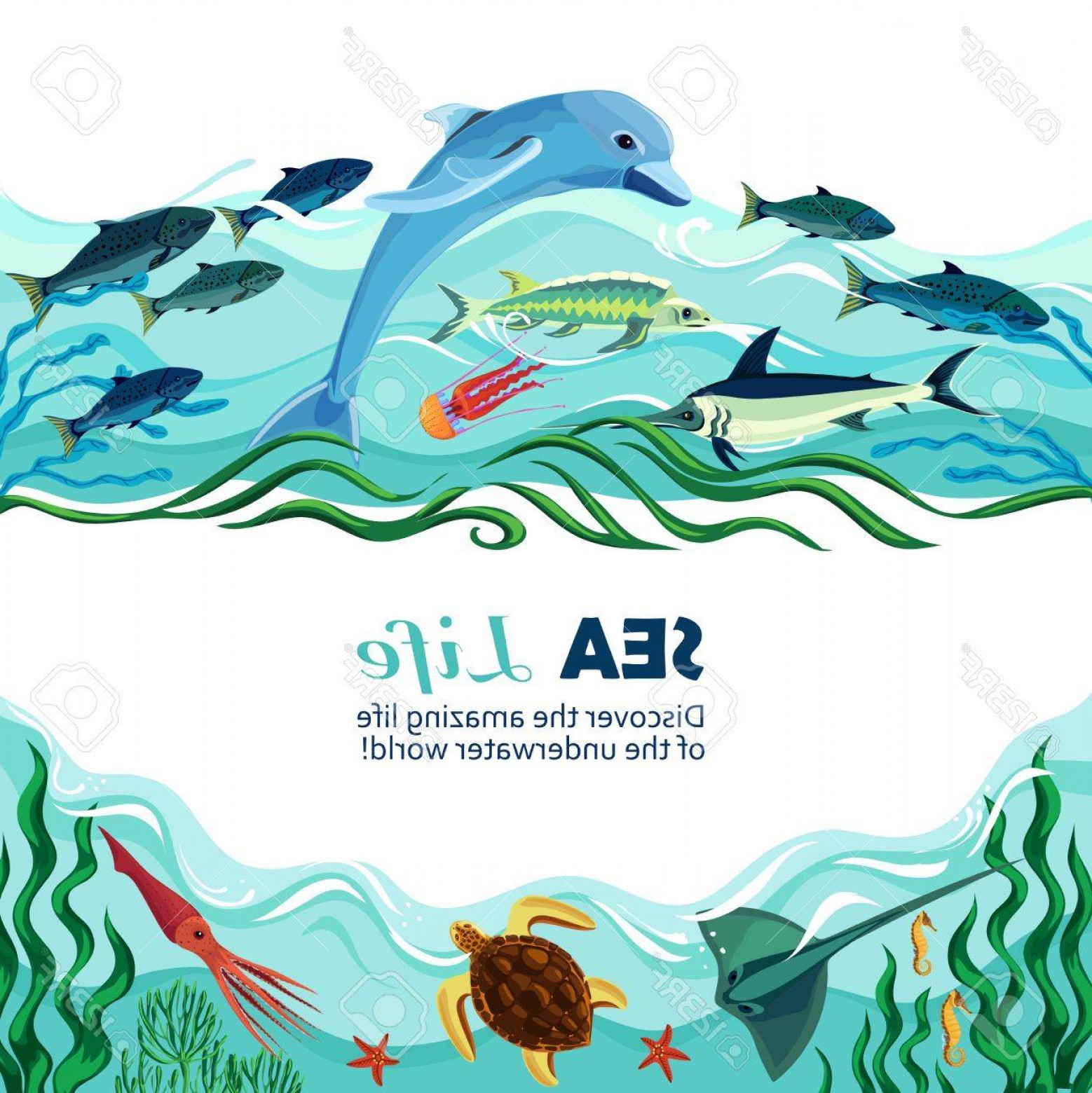Underwater Sea Vector Art: Photostock Vector Cartoon Vector Illustration Of Sea Life With Exotic Underwater Inhabitants And Shoal Of Fishes In Ma