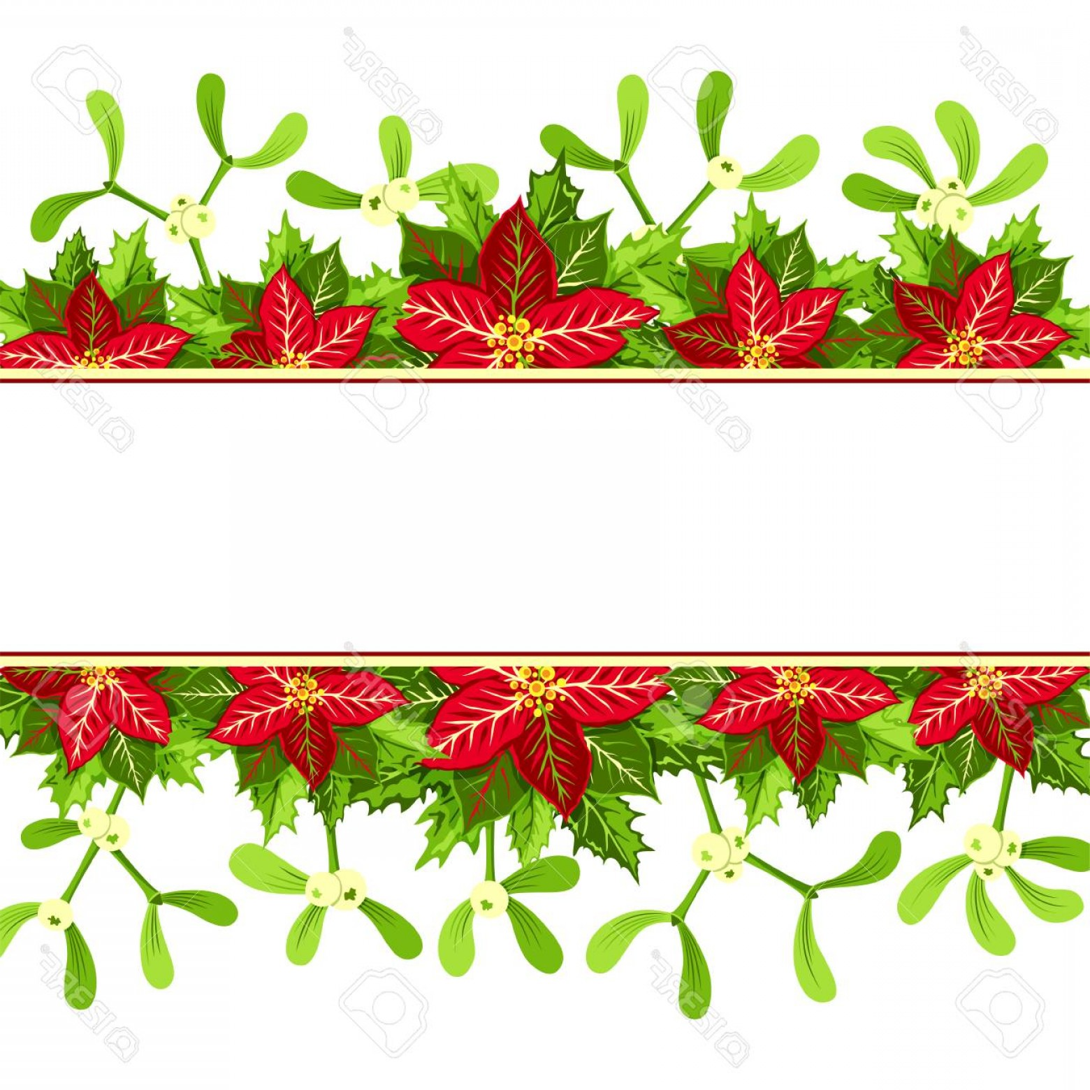 Christmas Horizontal Vector: Photostock Vector Christmas Background With Red Poinsettia Mistletoe And Holly Leaves Decoration Elements Horizontal B
