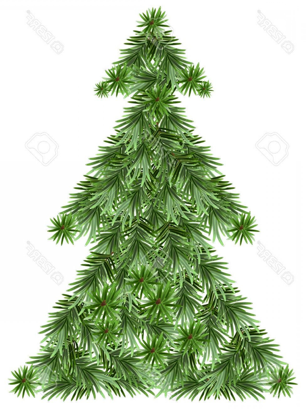 Pine Tree Vector Format: Photostock Vector Christmas Pine Tree Isolated Illustration In Vector Format