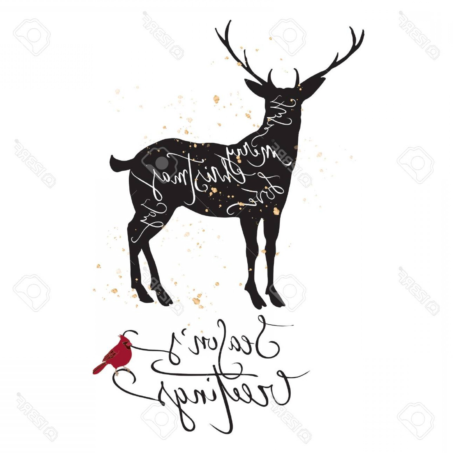 Black And White Holiday Deer Vector: Photostock Vector Christmas Template With Deer Cardinal Bird And Holiday Hand Drawn Brush Lettering Great For Greeting