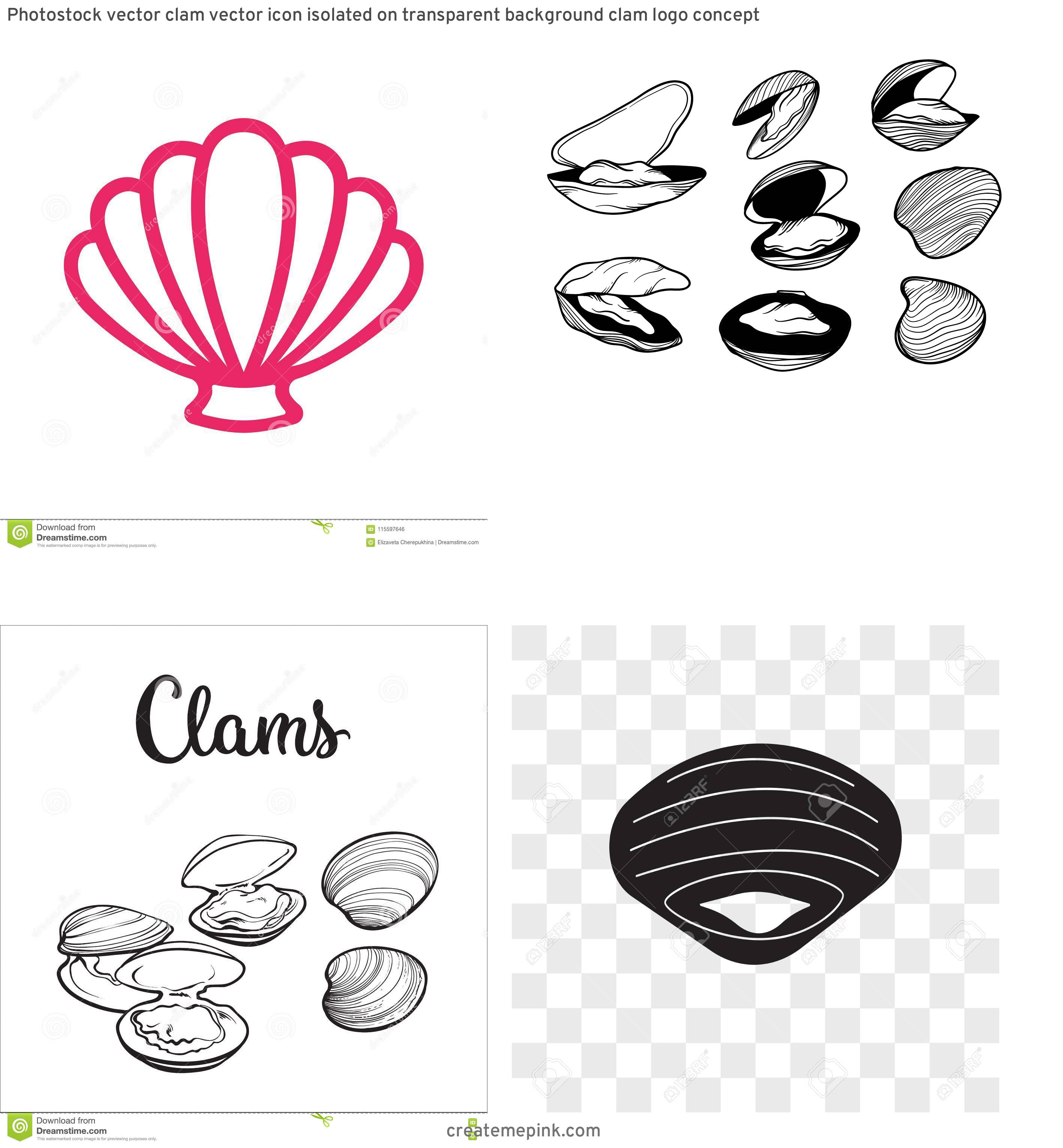 Clam Vector: Photostock Vector Clam Vector Icon Isolated On Transparent Background Clam Logo Concept