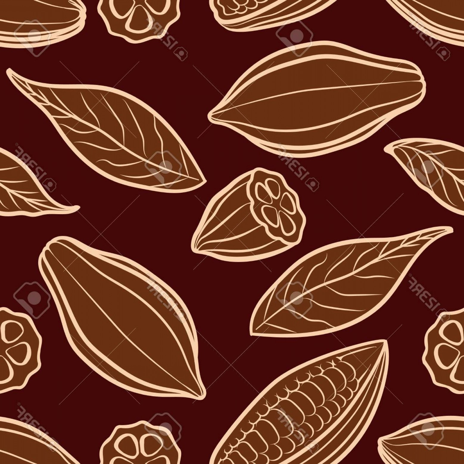 Chocolate Vector Plant: Photostock Vector Cocoa Beans Engraved Seamless Pattern Chocolate Packing Pattern