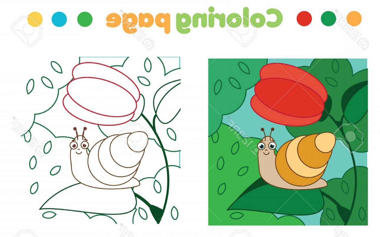 Vector Coloring Sheet: Photostock Vector Coloring Page With Snail On Flower Color The Picture Educational Children Game Drawing Kids Activity