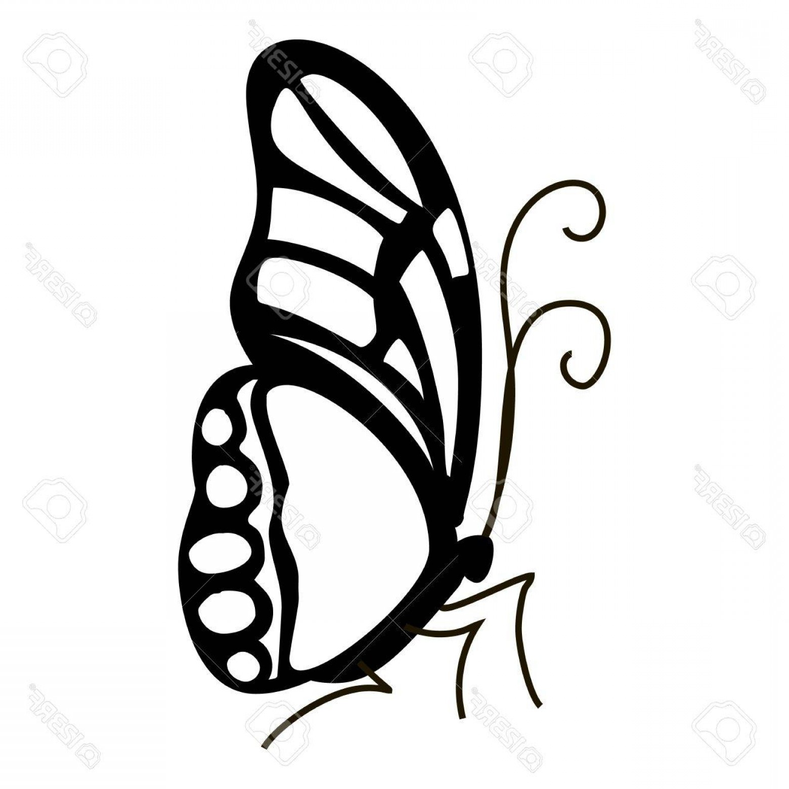 Mariposa Vector: Photostock Vector Contour Butterfly Icon Simple Illustration Of Contour Butterfly Vector Icon For Web
