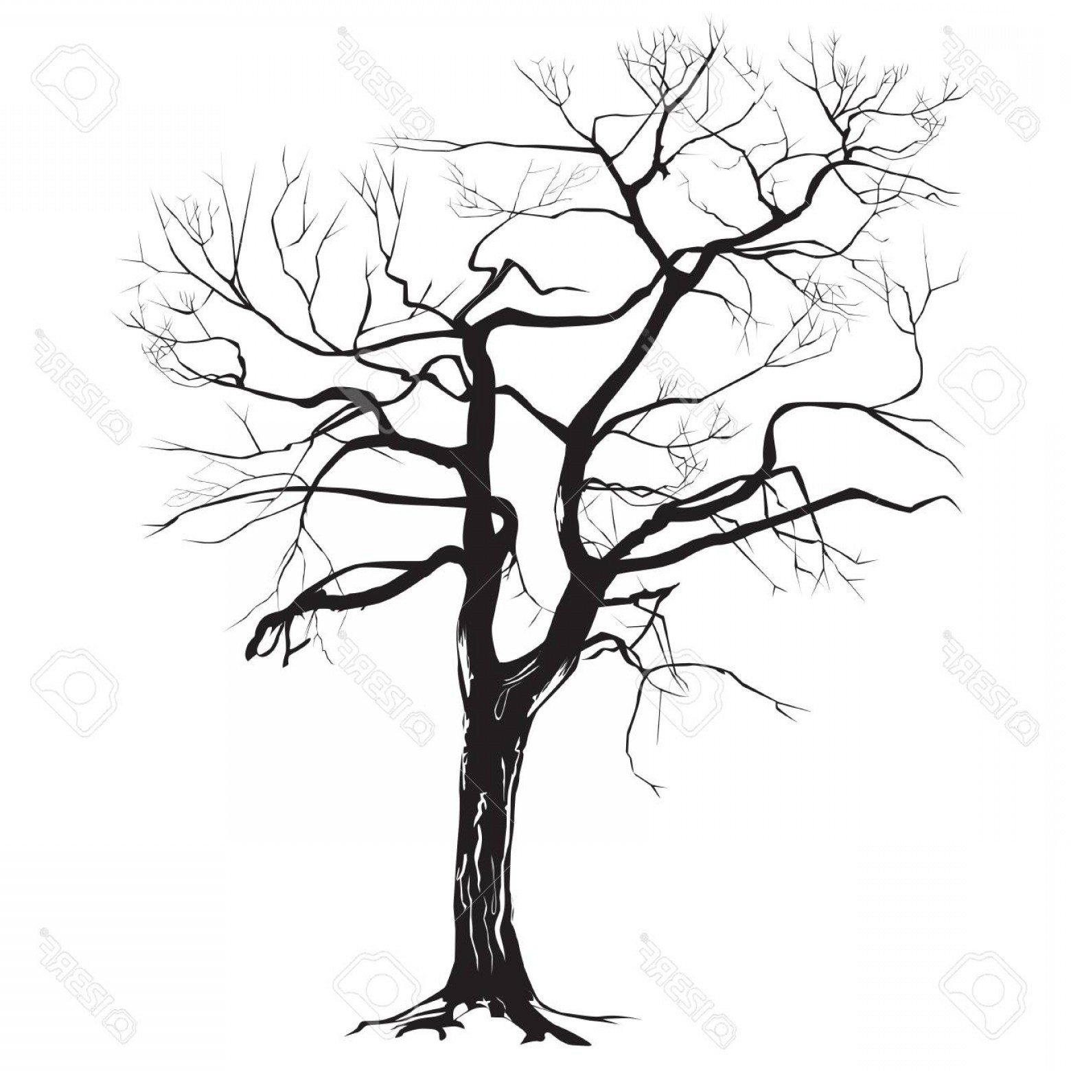 Tree Trunk Silhouette Vector: Photostock Vector Contrast Silhouette Of A Tree Trunk Without Leaves On A White Background
