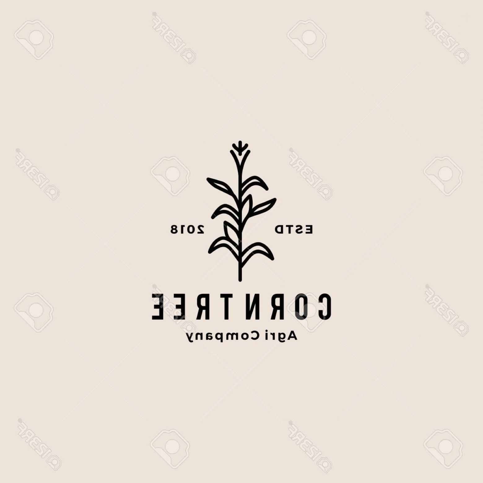 Maize Vector Tree: Photostock Vector Corn Tree Hipster Retro Vintage Badge Vector Icon Illustration