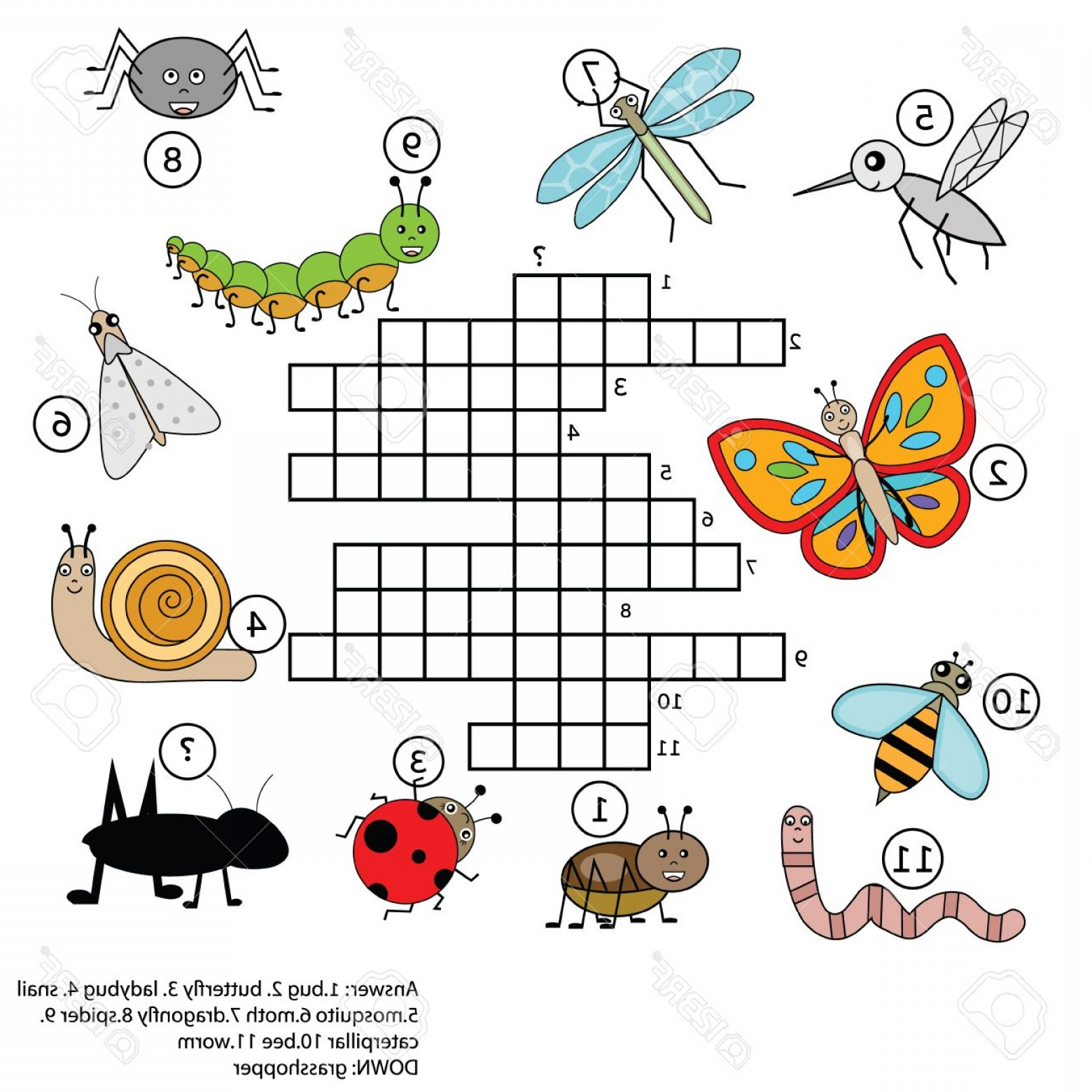 Mosquito Vector Worksheet: Photostock Vector Crossword Educational Children Game With Answer Learning Vocabulary Animals And Insects Theme Vector