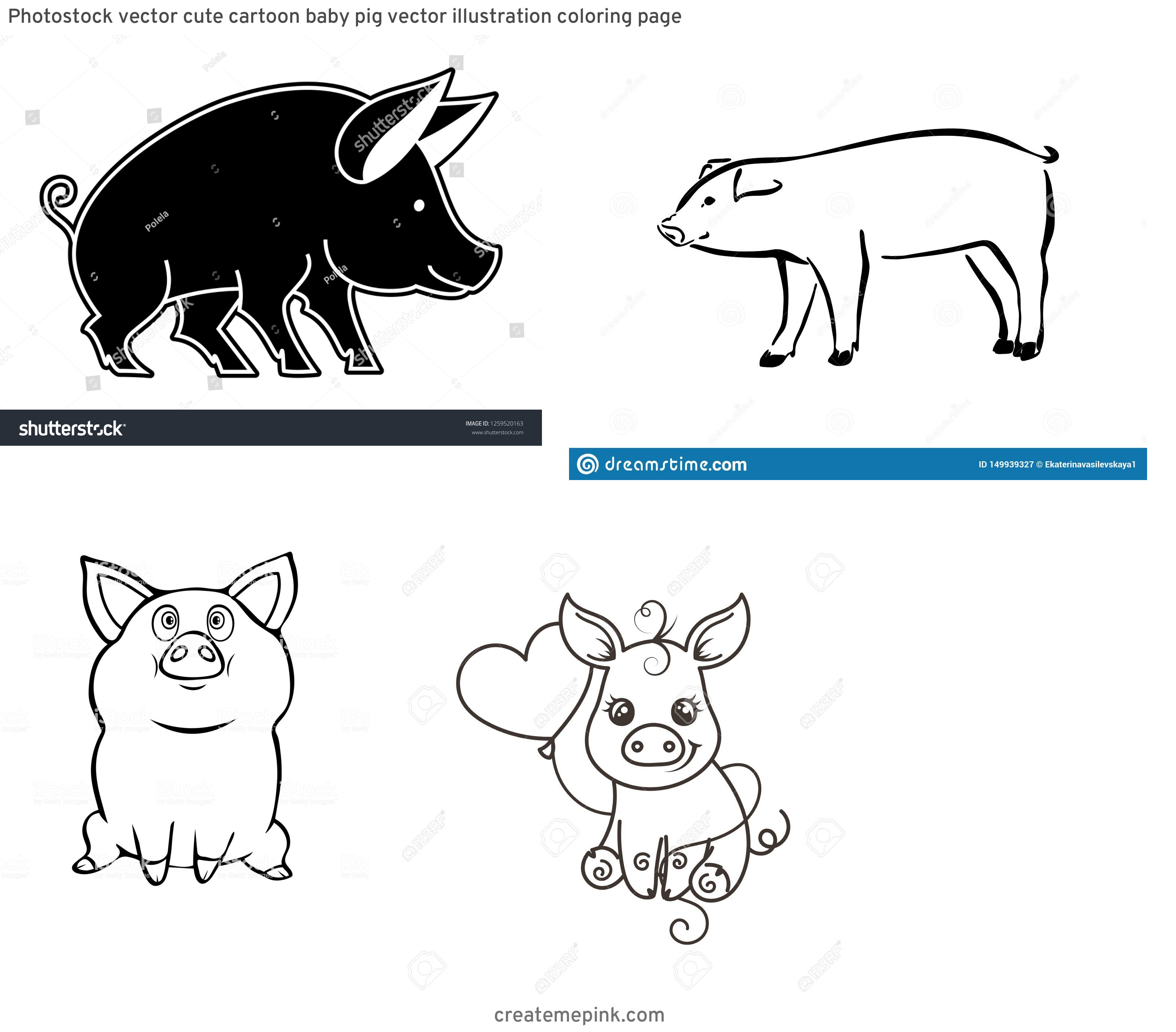 Cute Pig Vector Black And White: Photostock Vector Cute Cartoon Baby Pig Vector Illustration Coloring Page