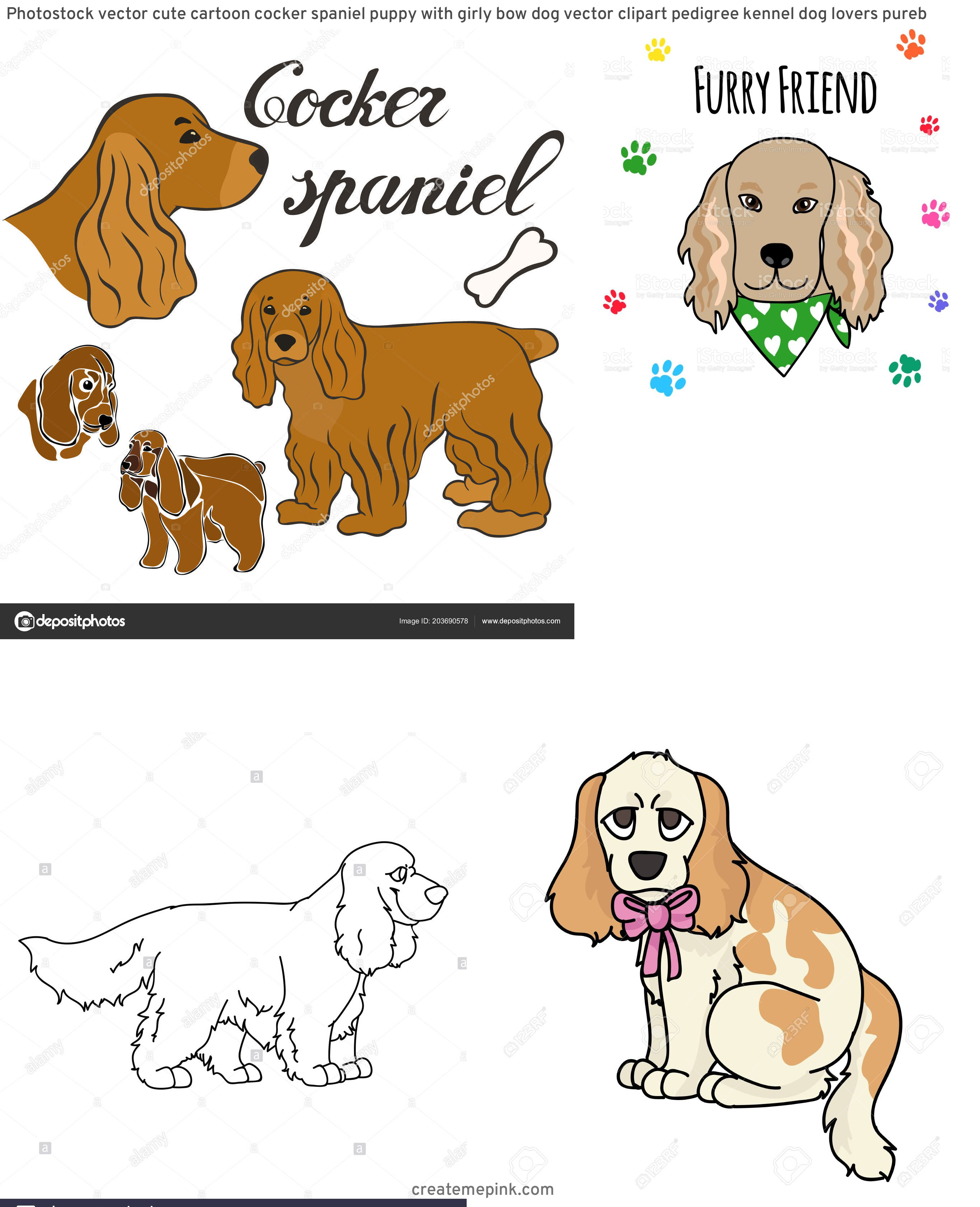 Spaniel Dog Vector: Photostock Vector Cute Cartoon Cocker Spaniel Puppy With Girly Bow Dog Vector Clipart Pedigree Kennel Dog Lovers Pureb