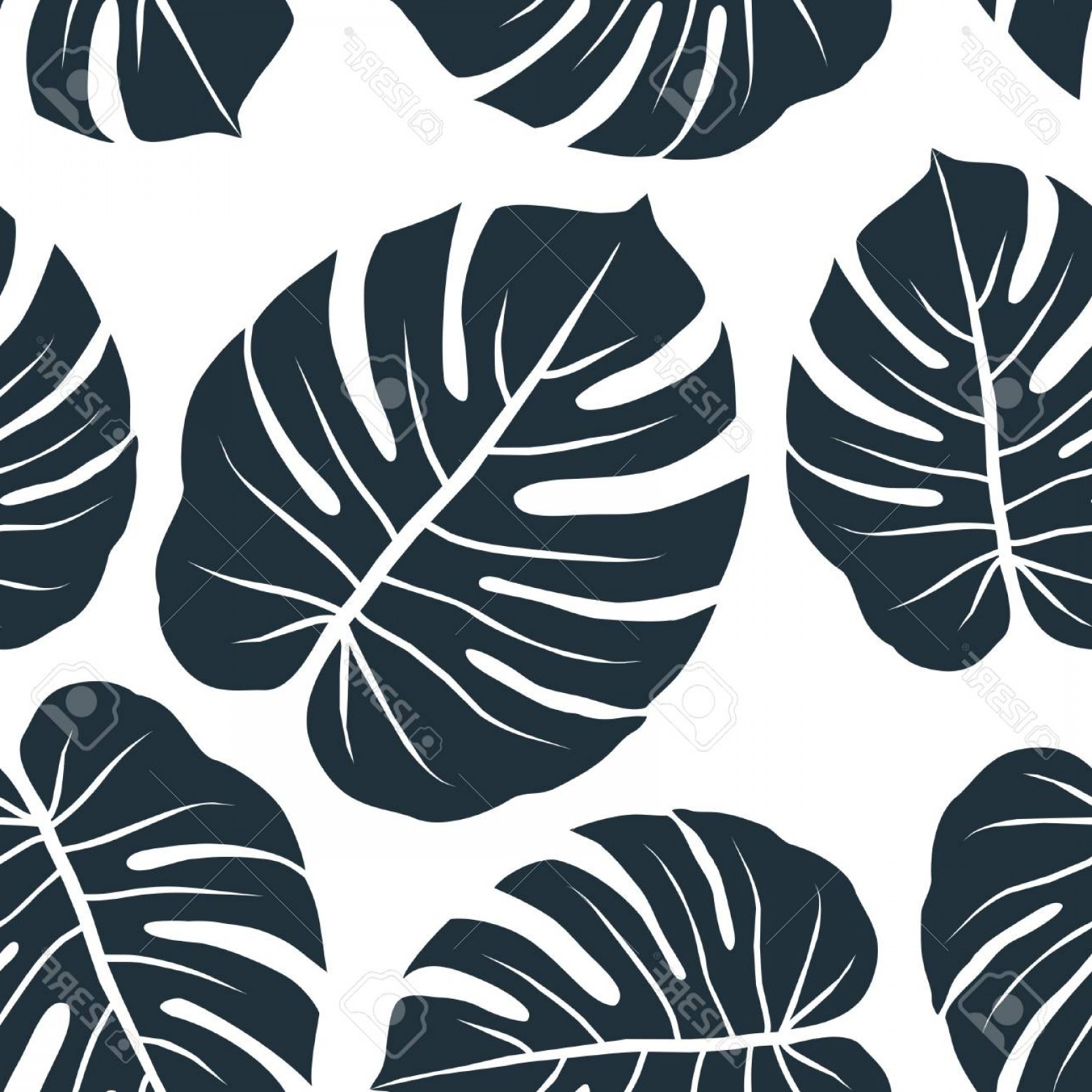 Vector Leaf Graphicd: Photostock Vector Dark Monstera Leaves Graphic Abstract Seamless Pattern On White Background