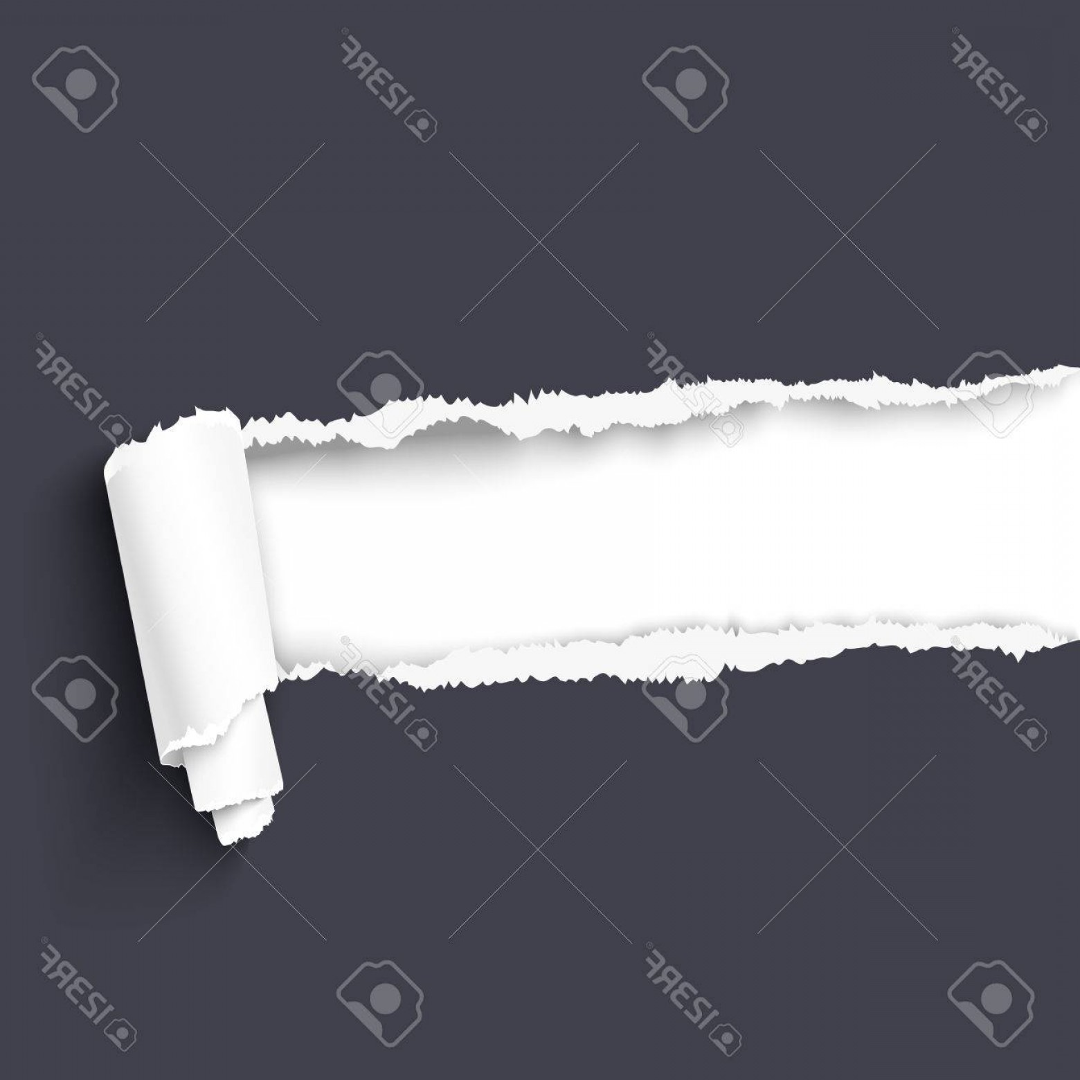 Ripped Black And White Vector: Photostock Vector Dark Torn Paper With Paper Scroll Over White Background With Copy Space For Your Text Paper With Rip