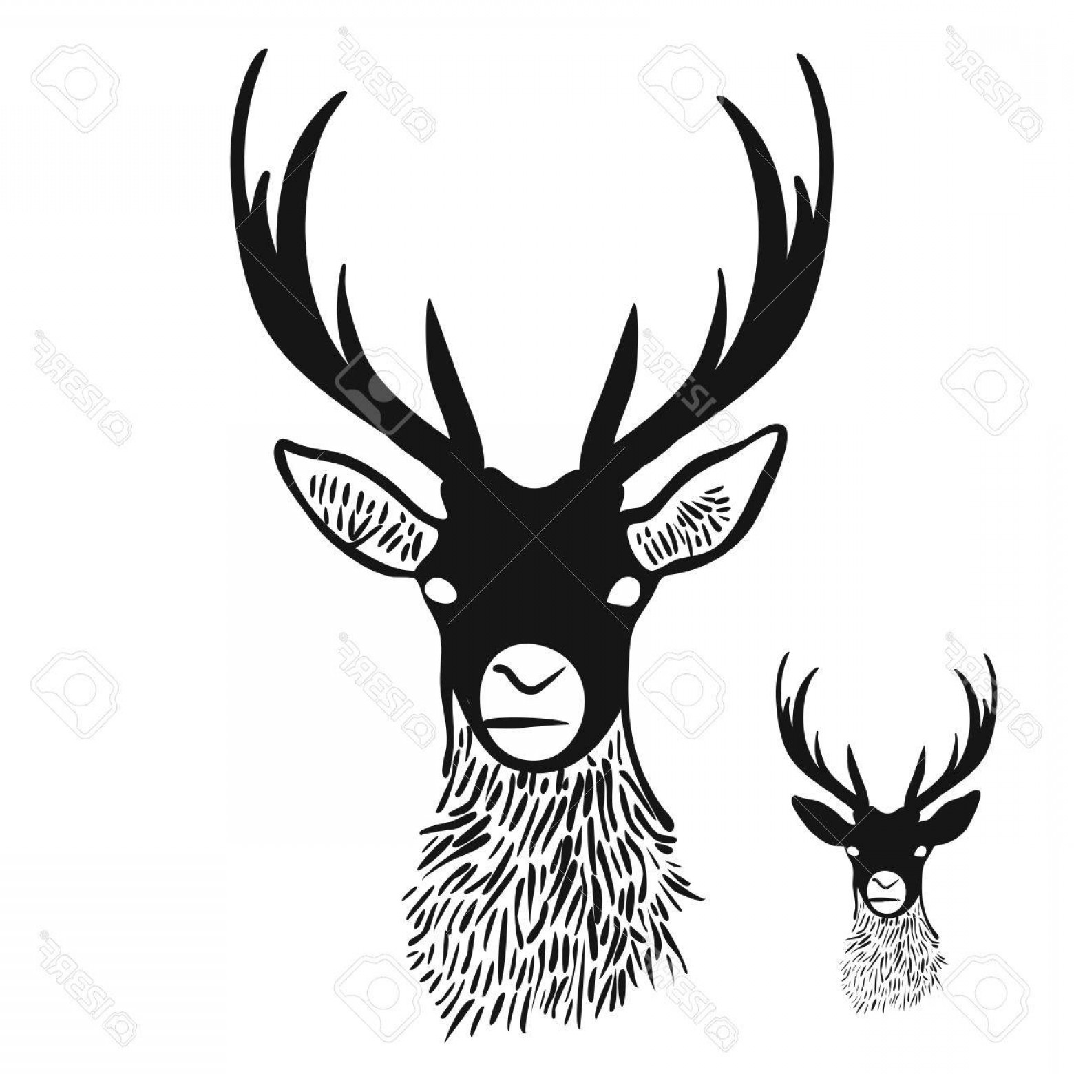 Vector Buck Print: Photostock Vector Deer Head Silhouette Digital Wall Art Vector Drawing Various Versions For Large Print And Small Icon