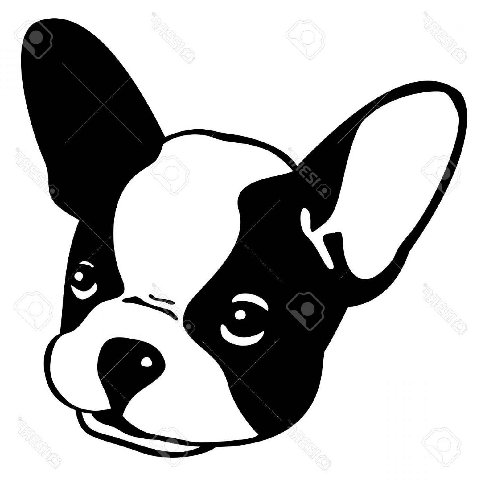 Bulldog Vector Art: Photostock Vector Dog French Bulldog Vector Icon Head Face Illustration