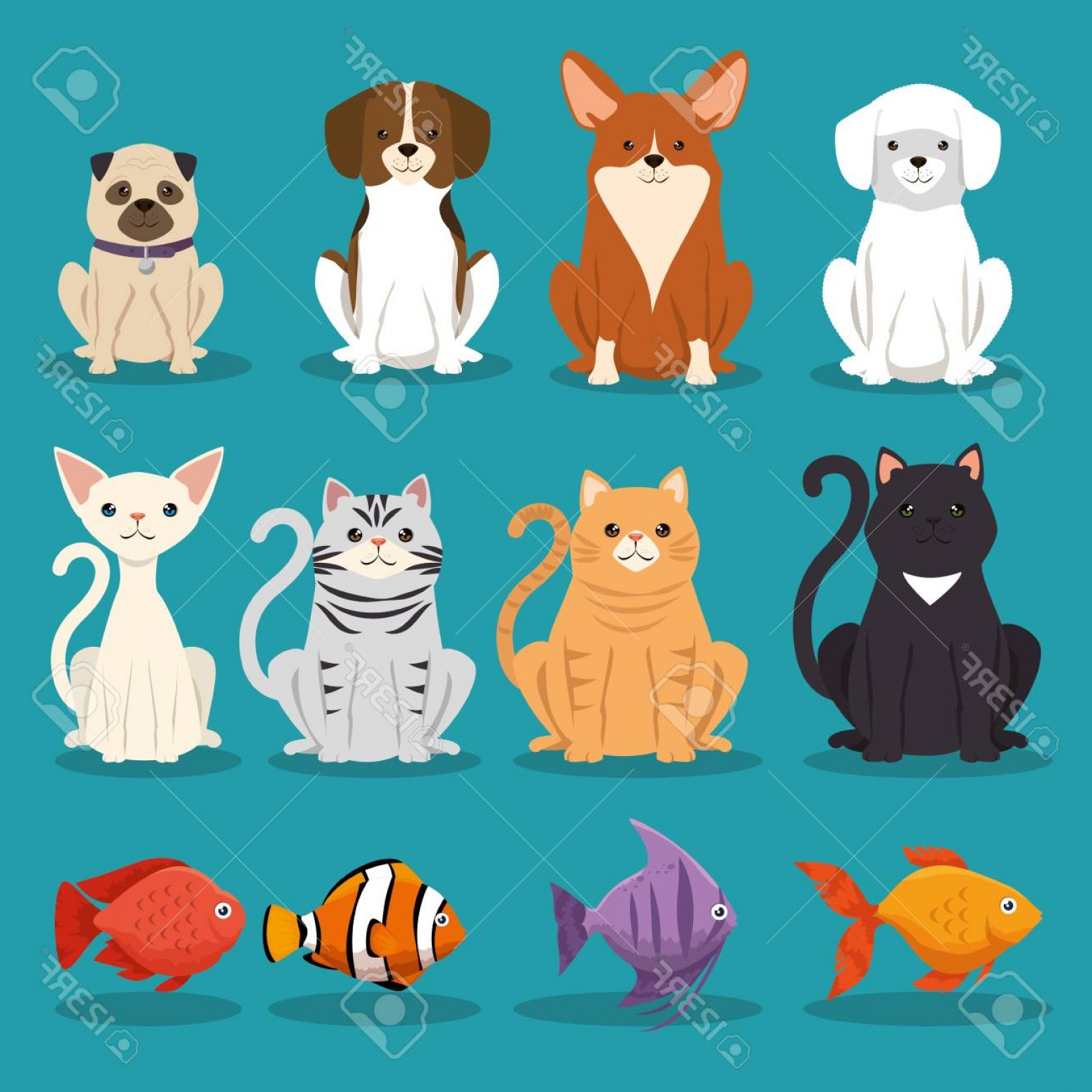 Dog And Cat Vector Illustration: Photostock Vector Dogs Cats And Fish Pets Characters Vector Illustration Design