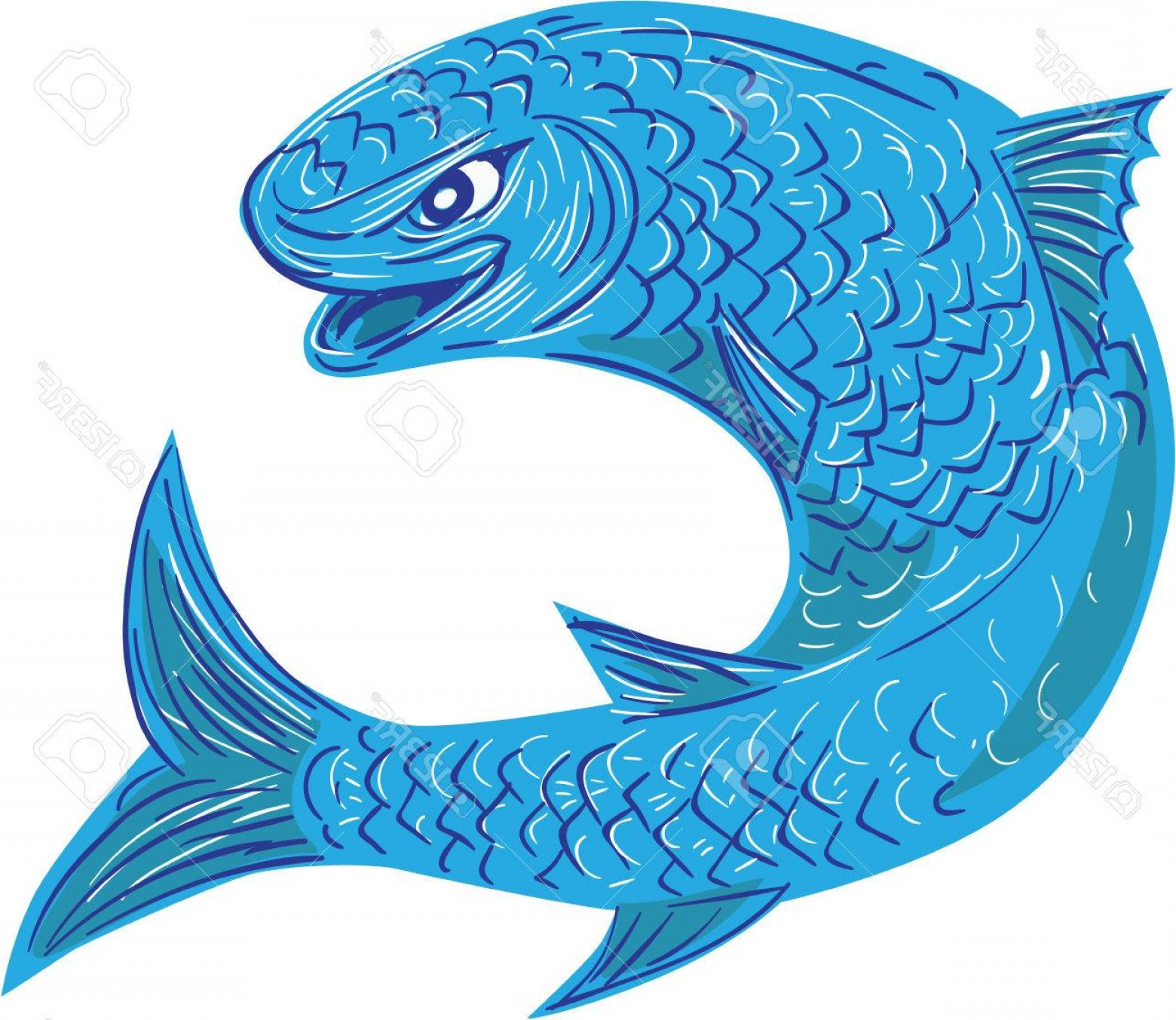 Mullet Vector Logo: Photostock Vector Drawing Sketch Style Illustration Of A Mullet Or Grey Mullet From A Family Mugilidae In The Order Of