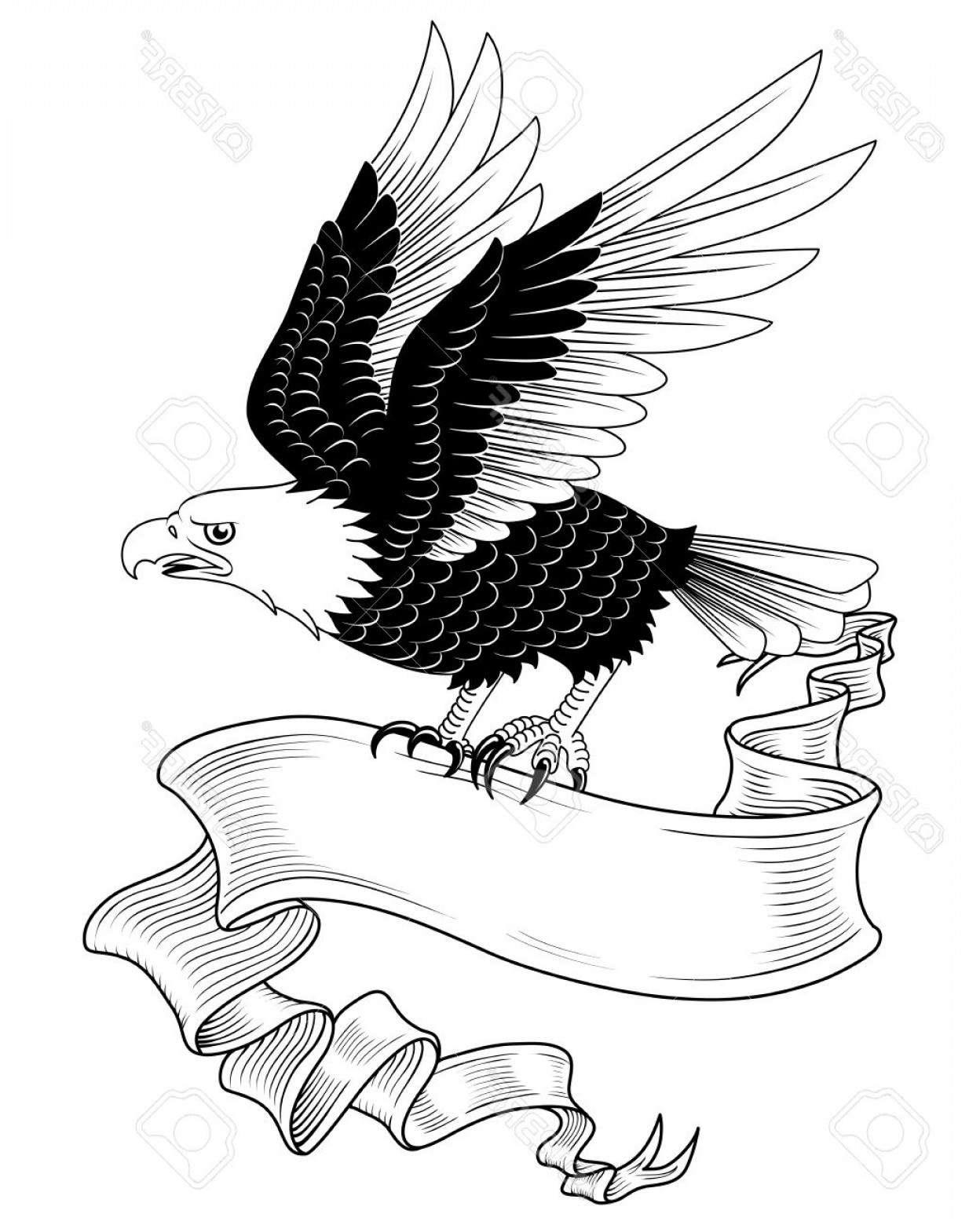 Eagle Banner Vector: Photostock Vector Eagle With Banner Hand Drawn Eagle Holding A Banner