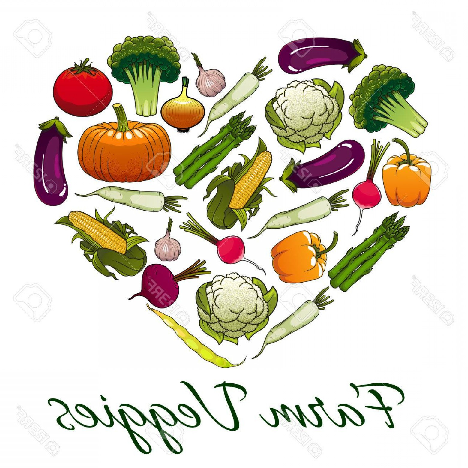 Vegan Heart Vectors: Photostock Vector Farm Veggies Emblem In Shape Of Heart Vector Emblem Of Fresh Vegetables Vegetarian Icon With Pumpkin
