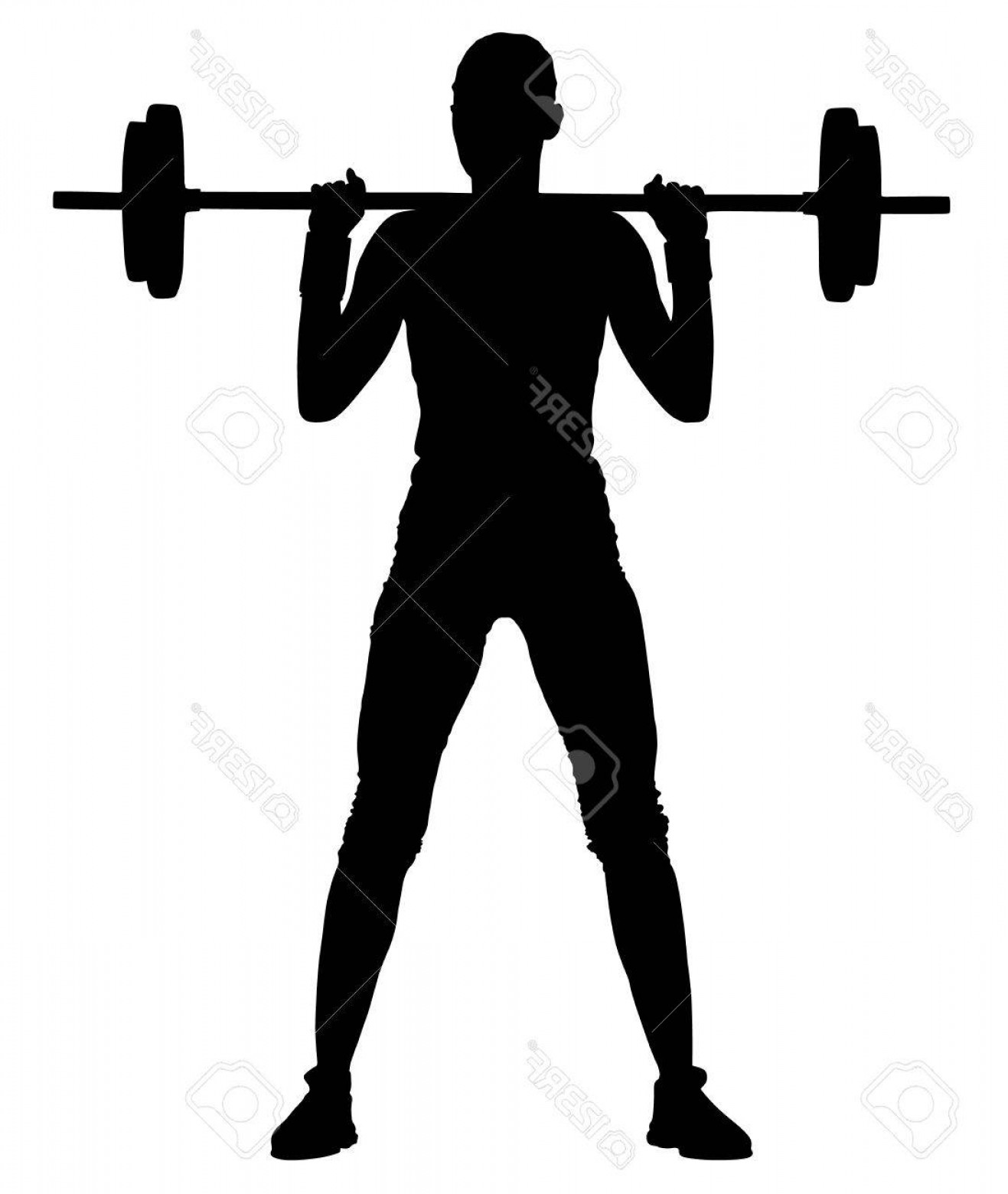 Vector Barbell Press: Photostock Vector Fitness Instructor Vector Silhouette Illustration Isolated On White Background Sport Training Gym An