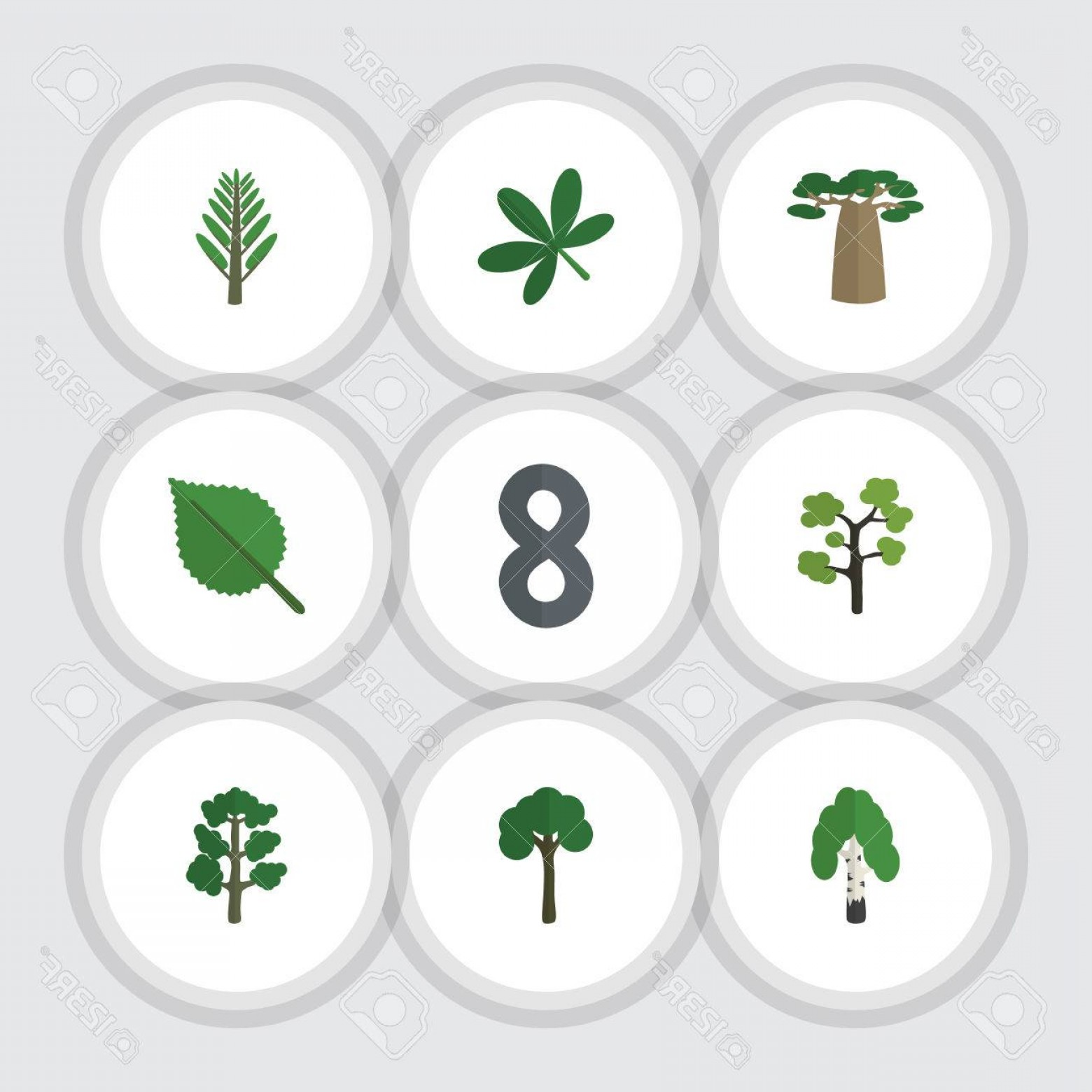 Vector Natural Willow: Photostock Vector Flat Icon Natural Set Of Maple Forest Jungle And Other Vector Objects Also Includes Birch Willow Ald