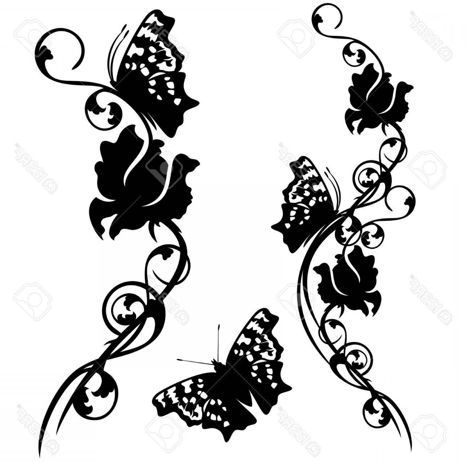 Butter Fly And Flower Vector Black And White: Photostock Vector Floral Motif With Butterflies Rose Flowers Black And White Design Set
