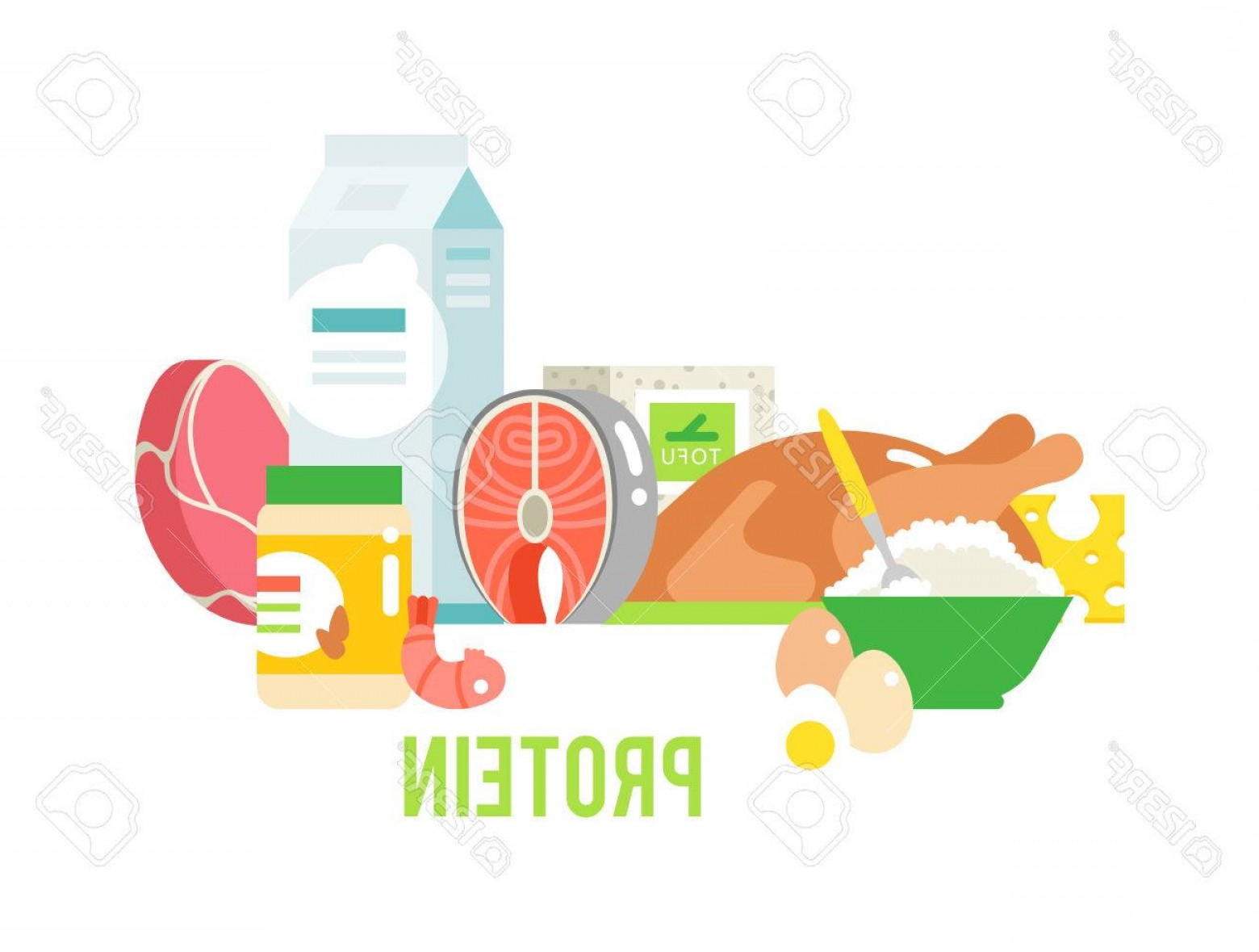 Vector Protein: Photostock Vector Food High In Protein Isolated On White Proteins Food Healthy Ingredient Meat And Raw Group Proteins