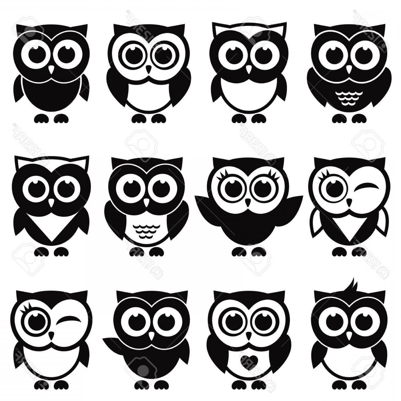 Funny Black And White Vector: Photostock Vector Funny Black And White Owls And Owlets