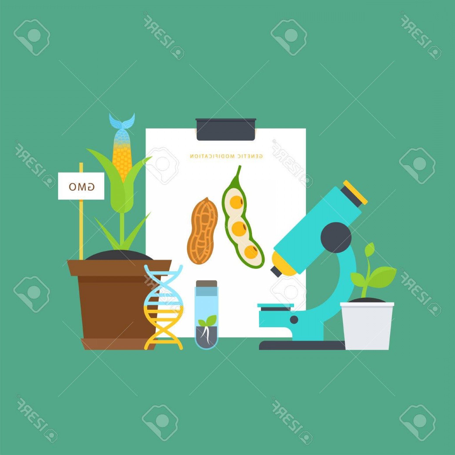 Genetic Engineering Animals Vector: Photostock Vector Genetic Engineering Simple Botanical Concept With Vials Seedlings Plants A Microscope A Dna Molecule