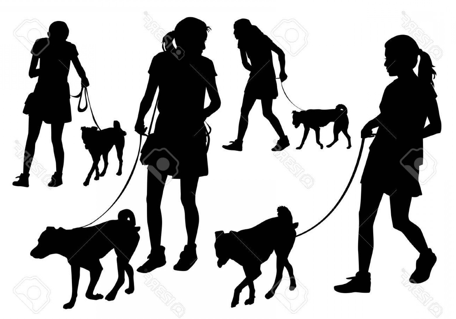 Vector Silhouette Dog Walk: Photostock Vector Girl Walking With A Dog On A Leash Silhouette On A White Background