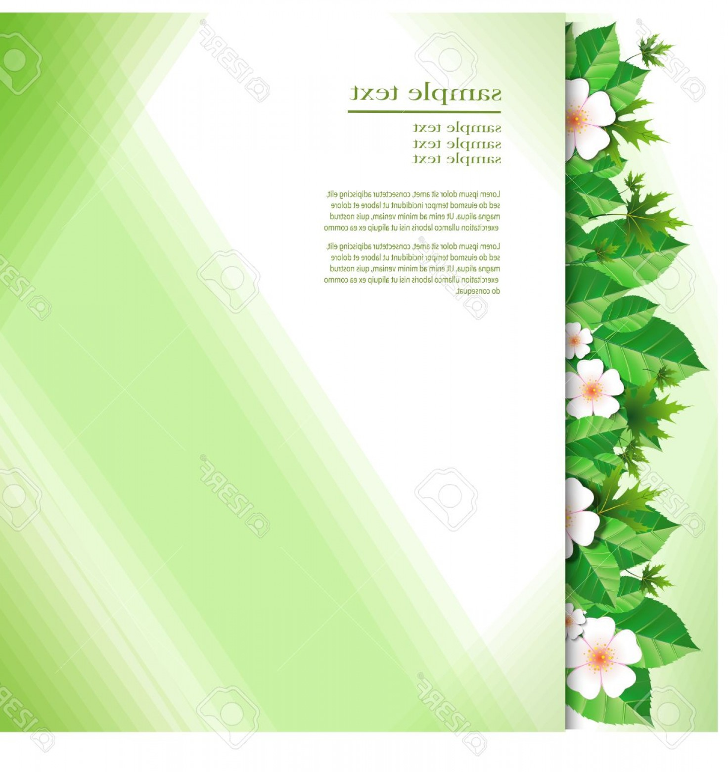 Green Flower Vector Designs: Photostock Vector Green Flower Background Greeting Card Abstract Floral Design In White Green And Light Yellow Color V