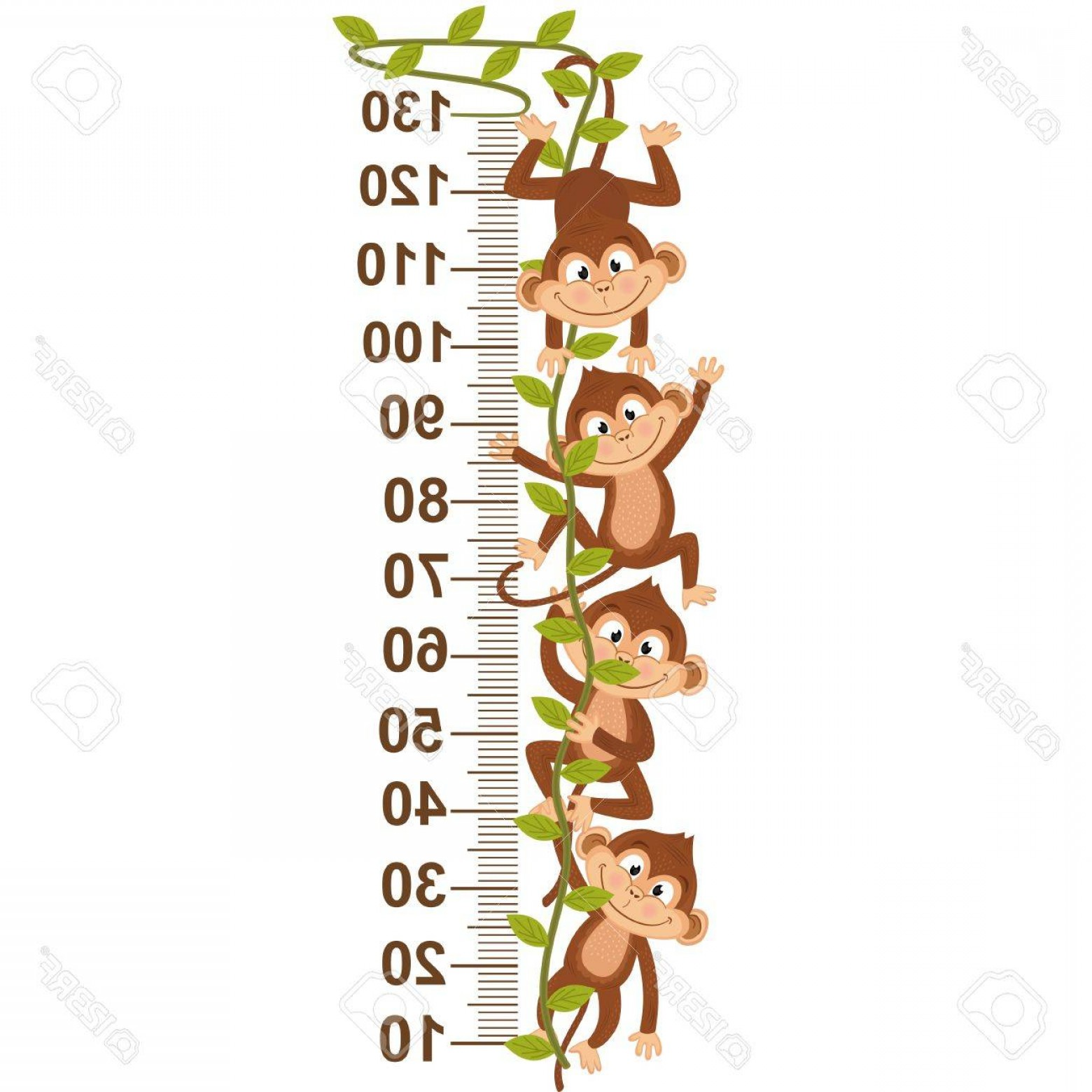 Vine Vector Graphics: Photostock Vector Growth Measure With Monkey On Vine Vector Illustration Eps