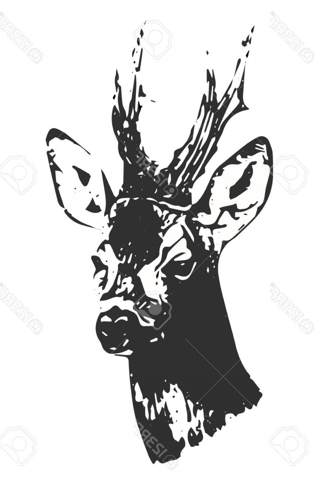 Vector Buck Print: Photostock Vector Hand Drawn Black And White Buck Silhouette Vector Illustration Print For T Shirts