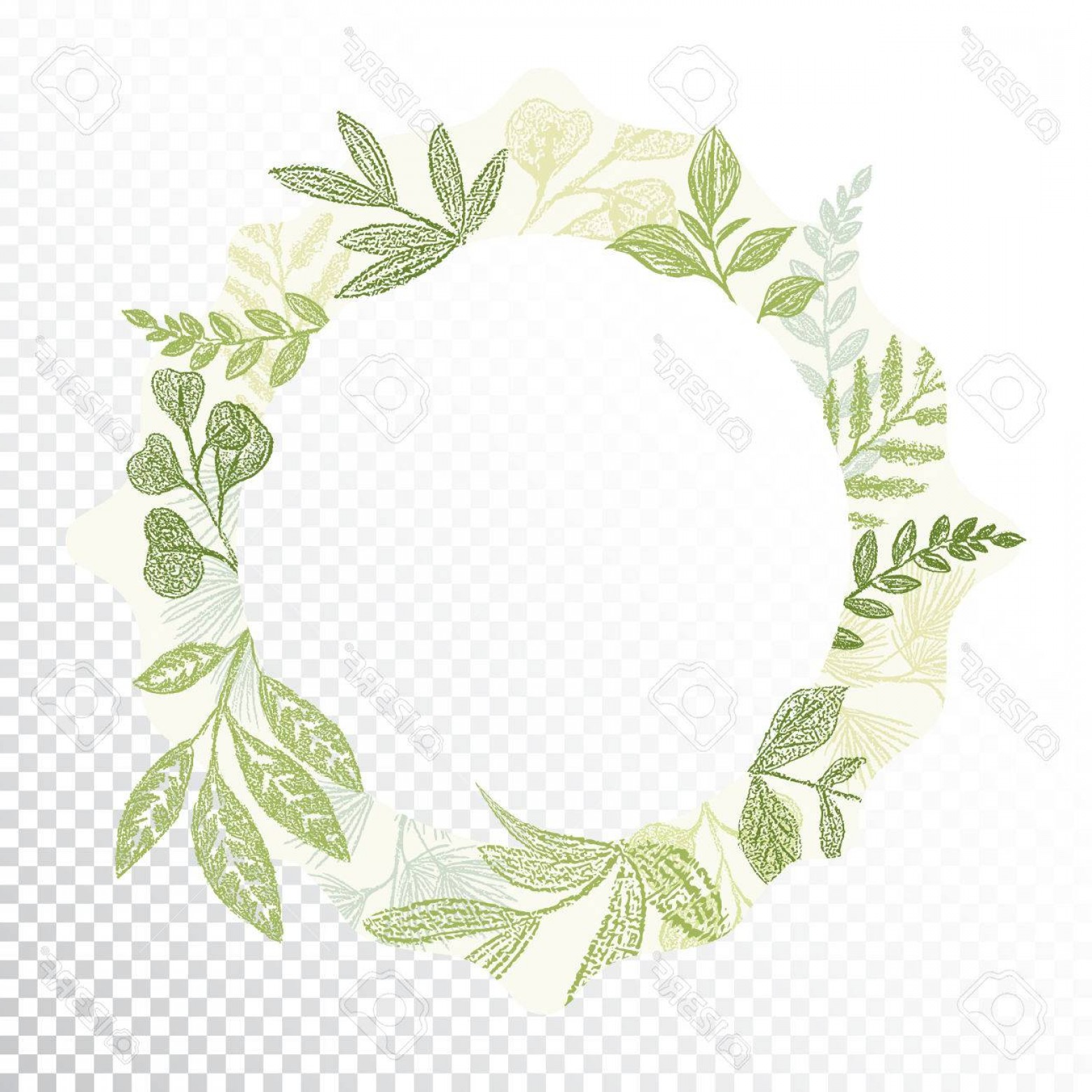 Green Oval Border Vector: Photostock Vector Hand Drawn Circle Flaral Frame Vector Green Branches And Leaves Border Decoration Round Greenery Car