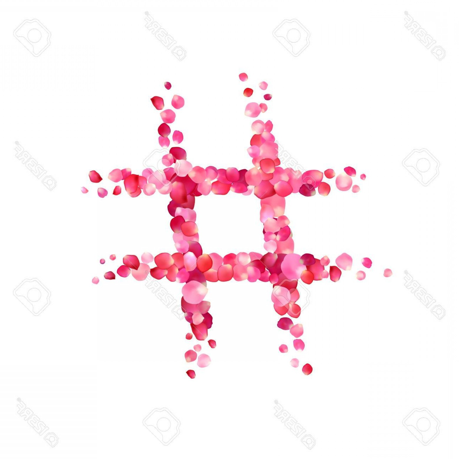 Hashtag Rose Vector: Photostock Vector Hashtag Vector Sign Of Pink Rose Petals