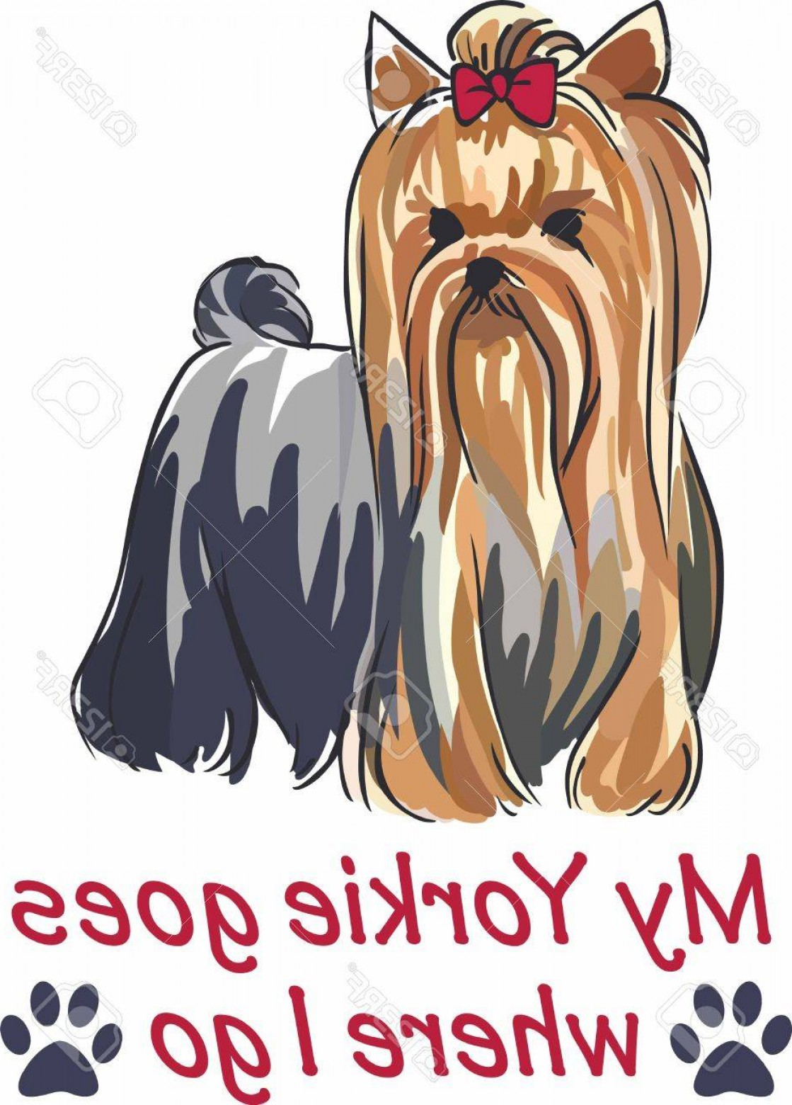 Cute Yorkie Dog Vector: Photostock Vector Have A Cute Yorkie With You Always With This Little Dog