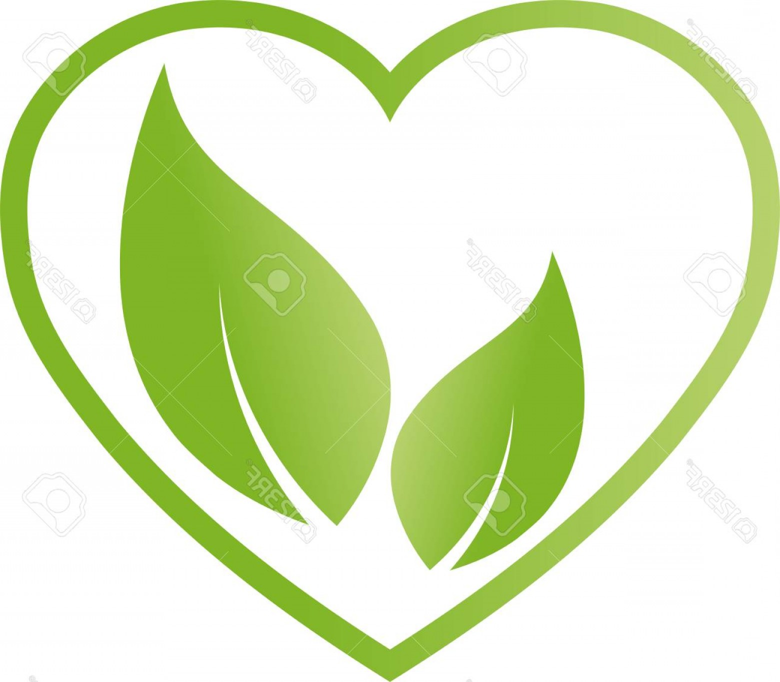 Vegan Heart Vectors: Photostock Vector Heart And Leaves Nature Vegan Illustration