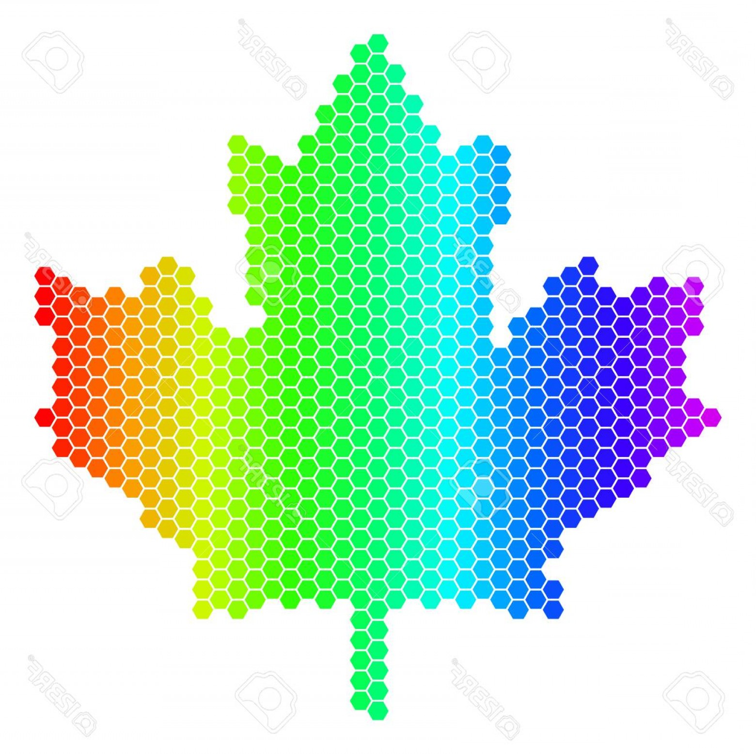 Geographic Leaf Vector: Photostock Vector Hexagon Spectrum Maple Leaf Vector Geographic Map In Bright Colors On A White Background Spectrum Ha