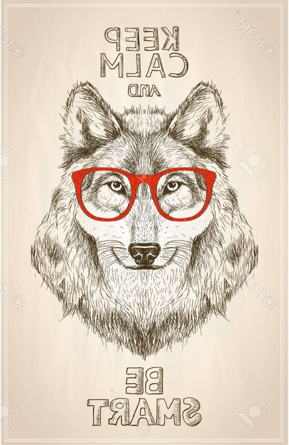 Calm Wolf Vector: Photostock Vector Hipster Wolf Portrait With Glasses Hand Drawn Graphic Illustartion Keep Calm And Be Smart Quote Card