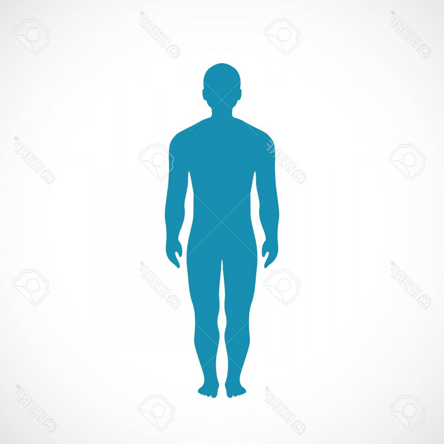 Human Body Outline Vector: Photostock Vector Human Body Silhouette Vector Icon