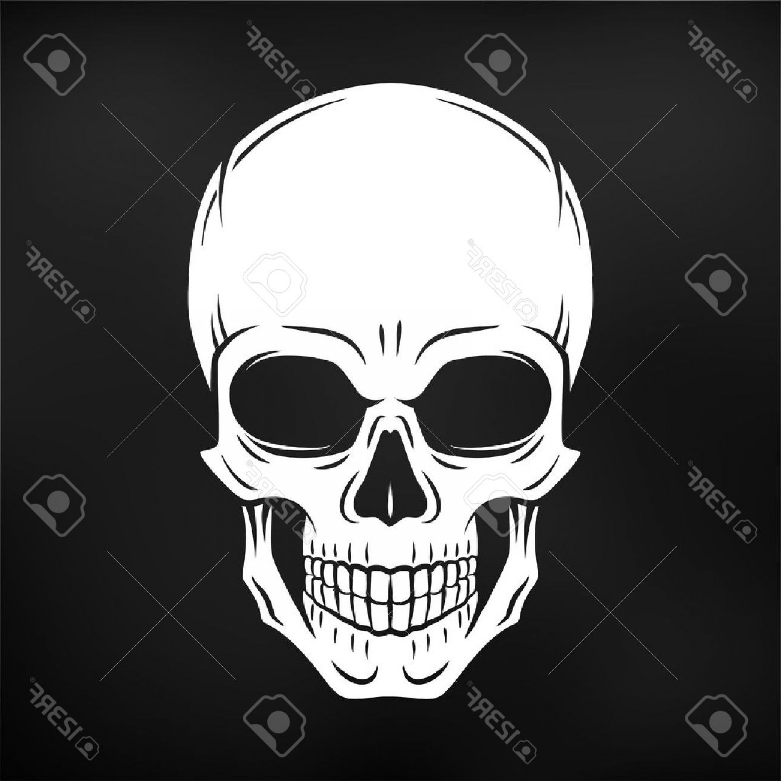 Skull Vector T-shirt Illustration: Photostock Vector Human Evil Skull Vector Jolly Roger Logo Template Death T Shirt Design Pirate Insignia Concept Poiso