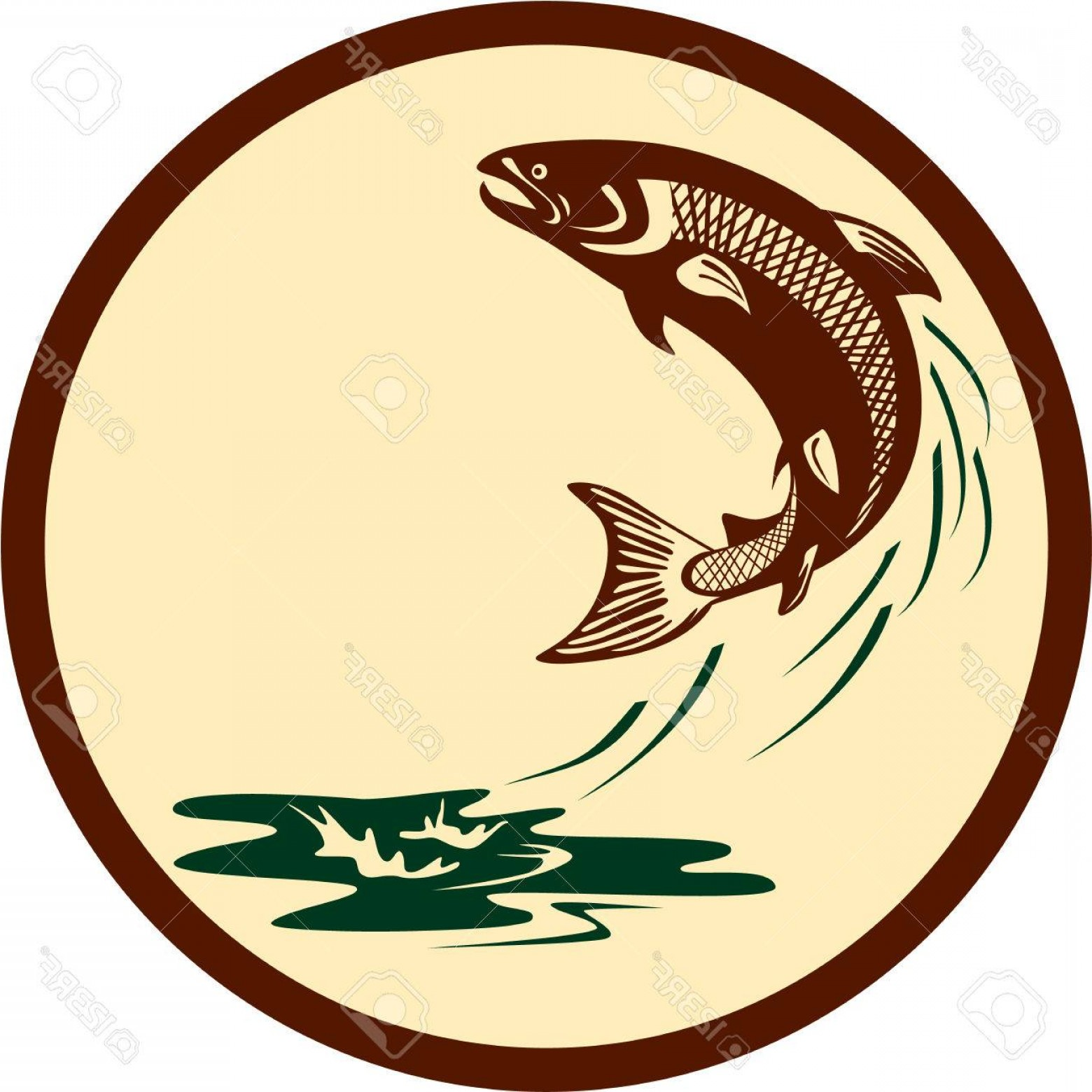 Speckled Trout Vector: Photostock Vector Illustration Of A Salmon Fish Jumping In Water Set Inside Circle Viewed From The Side On Isolated Ba