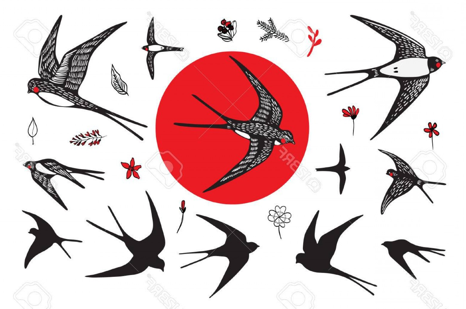 Swallow Vector: Photostock Vector Japanese Swallow Vector Hand Drawing Graphic Set