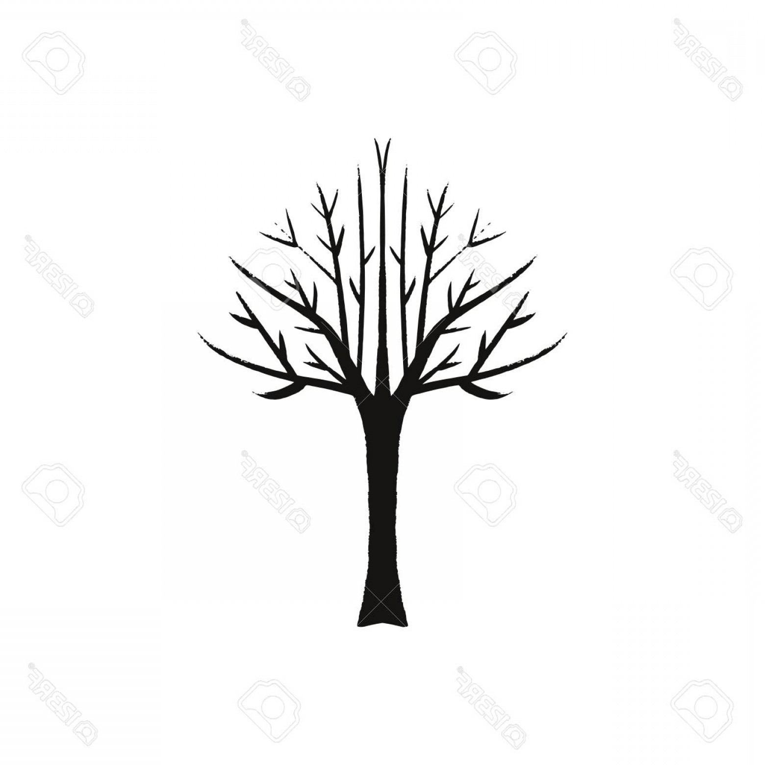 Continuous Tree Branch Vector Image: Photostock Vector Krone Tree Bare Branches Fallen Leaves Continuous Line Tree On White Background