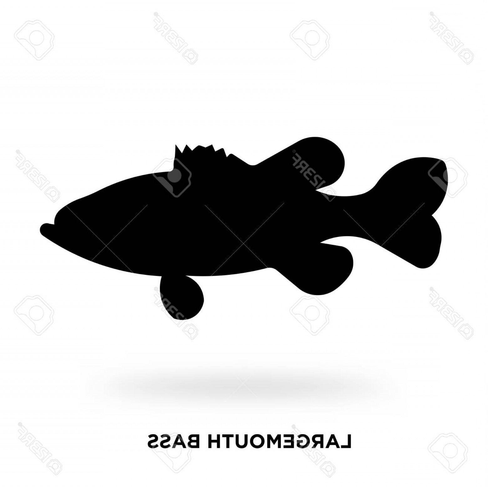 Largemouth Bass Silhouette Vector: Photostock Vector Largemouth Bass Silhouette Vector Illustration